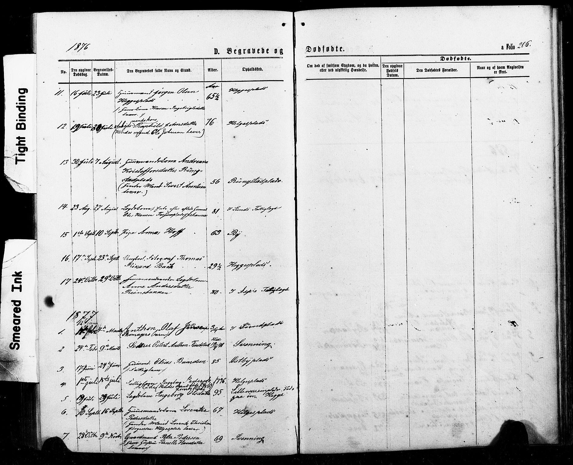SAT, Ministerialprotokoller, klokkerbøker og fødselsregistre - Nord-Trøndelag, 740/L0380: Klokkerbok nr. 740C01, 1868-1902, s. 206