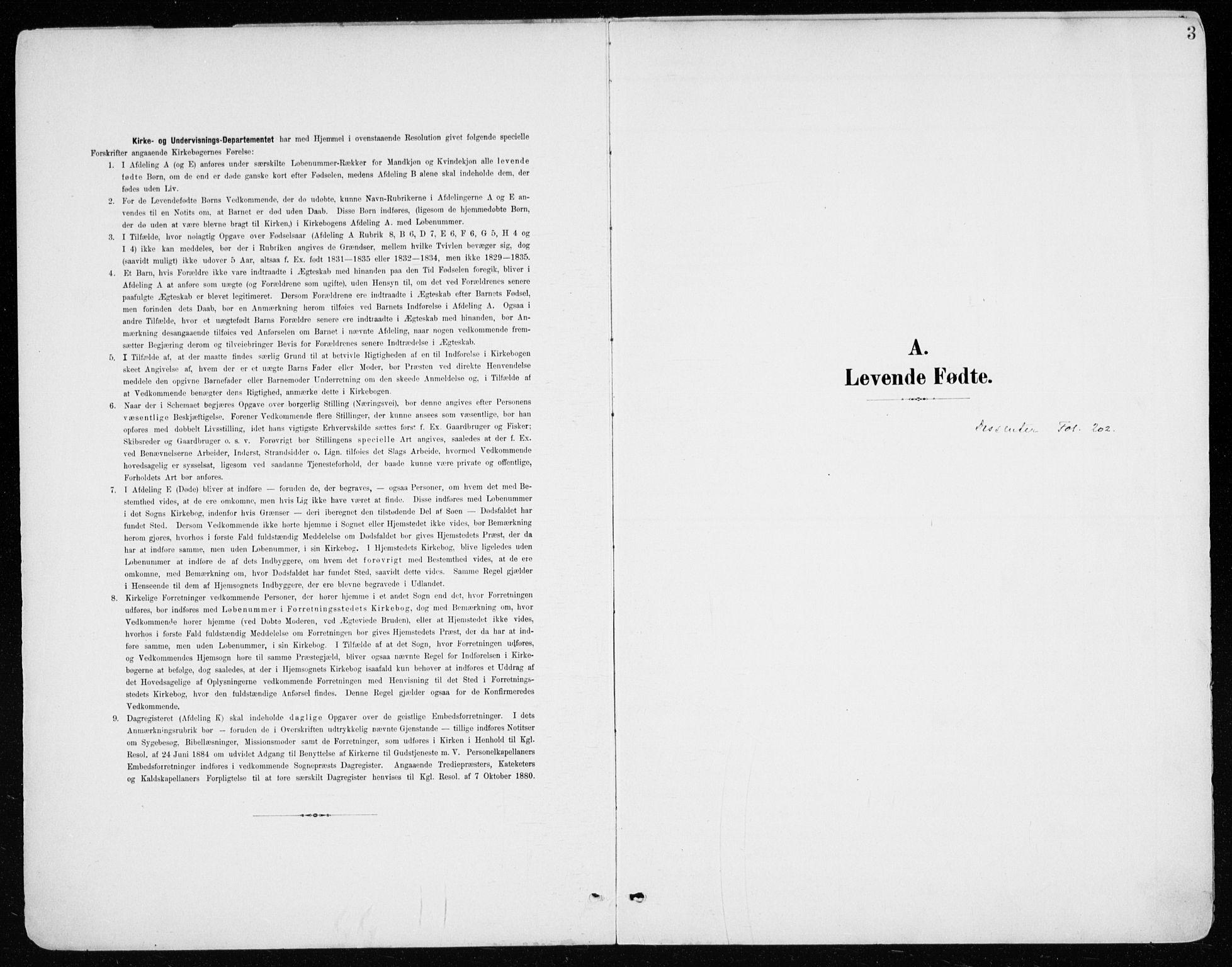 SAH, Vang prestekontor, Hedmark, H/Ha/Haa/L0021: Ministerialbok nr. 21, 1902-1917, s. 3
