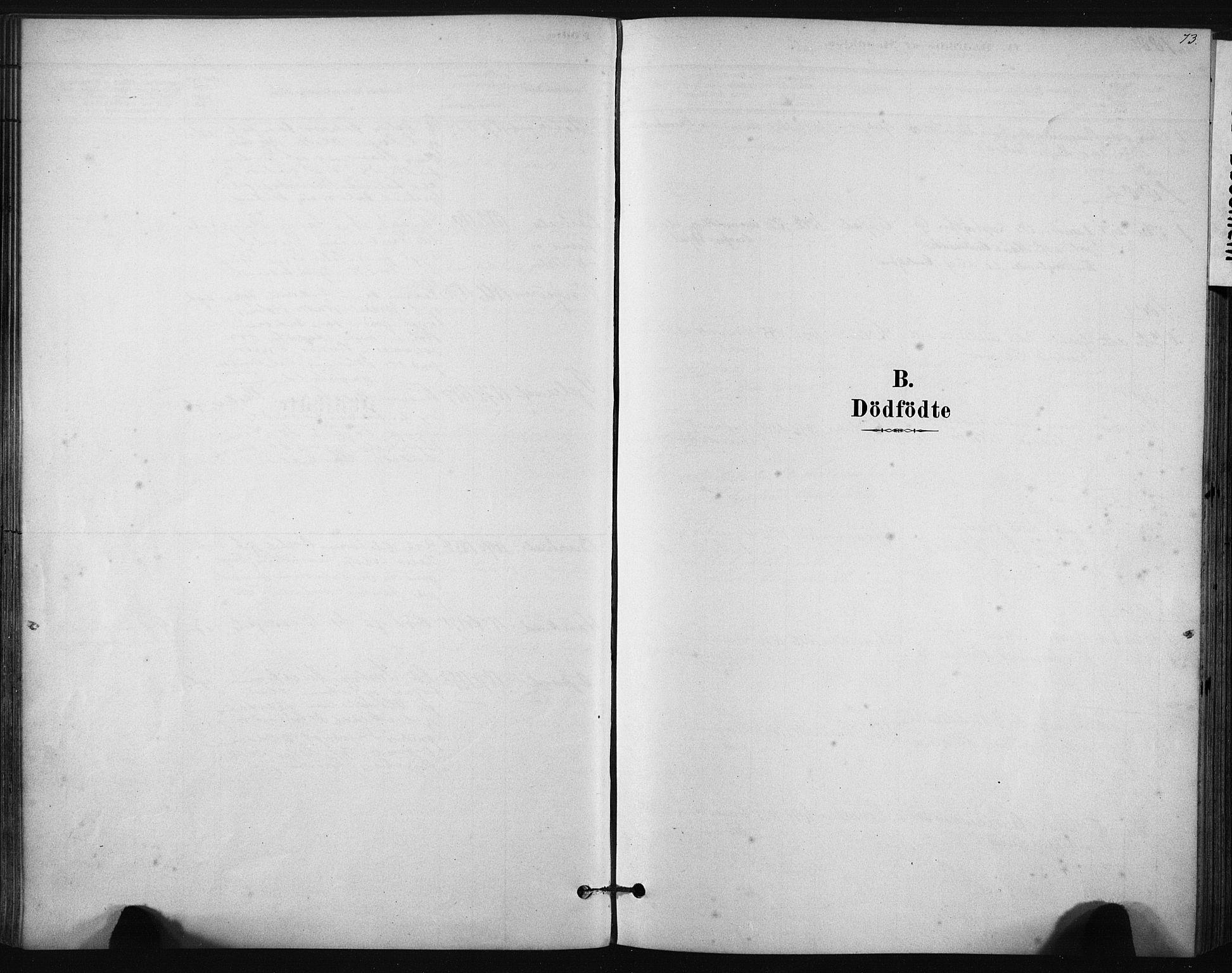 SAT, Ministerialprotokoller, klokkerbøker og fødselsregistre - Sør-Trøndelag, 631/L0512: Ministerialbok nr. 631A01, 1879-1912, s. 73