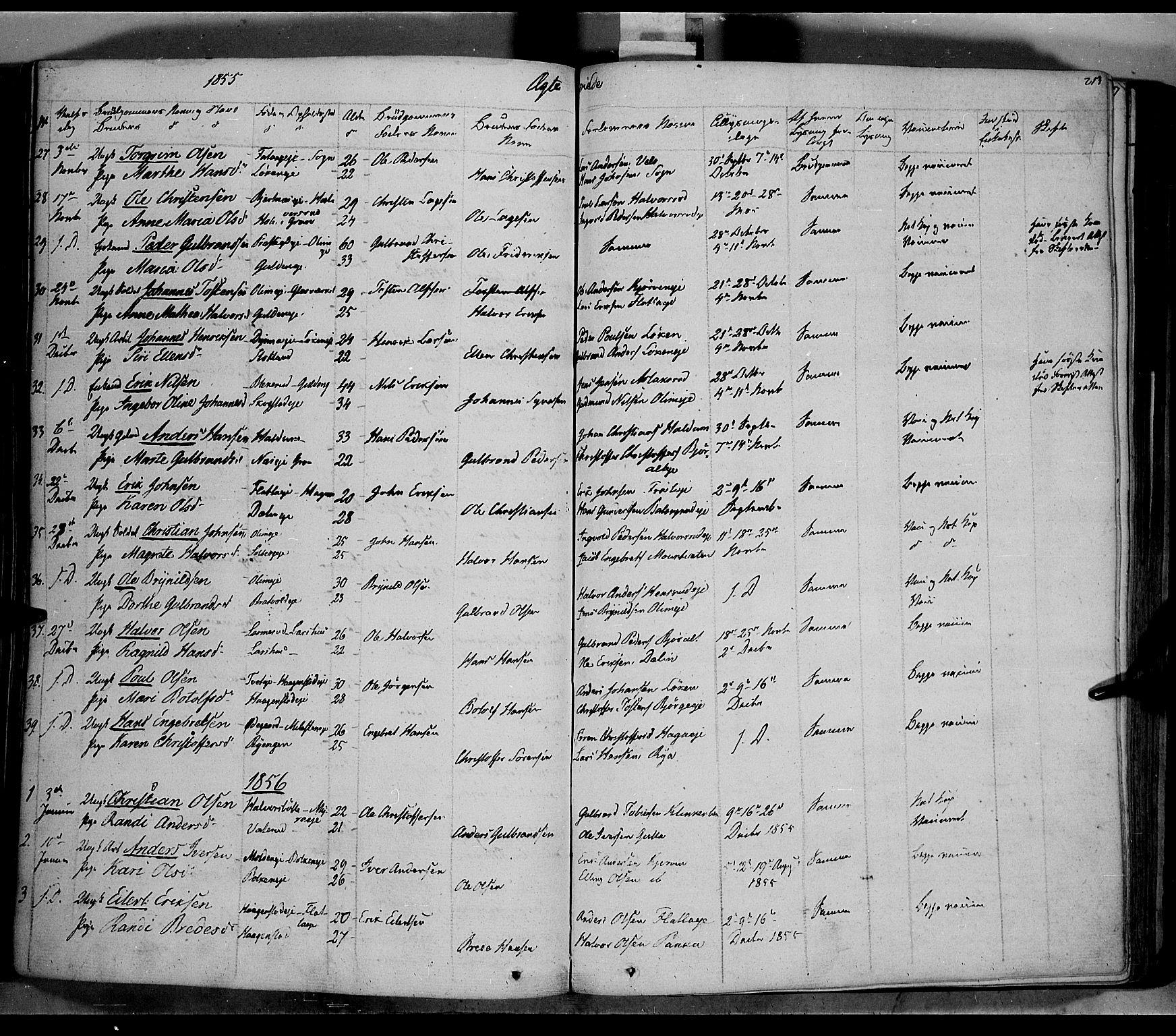 SAH, Jevnaker prestekontor, Ministerialbok nr. 6, 1837-1857, s. 213