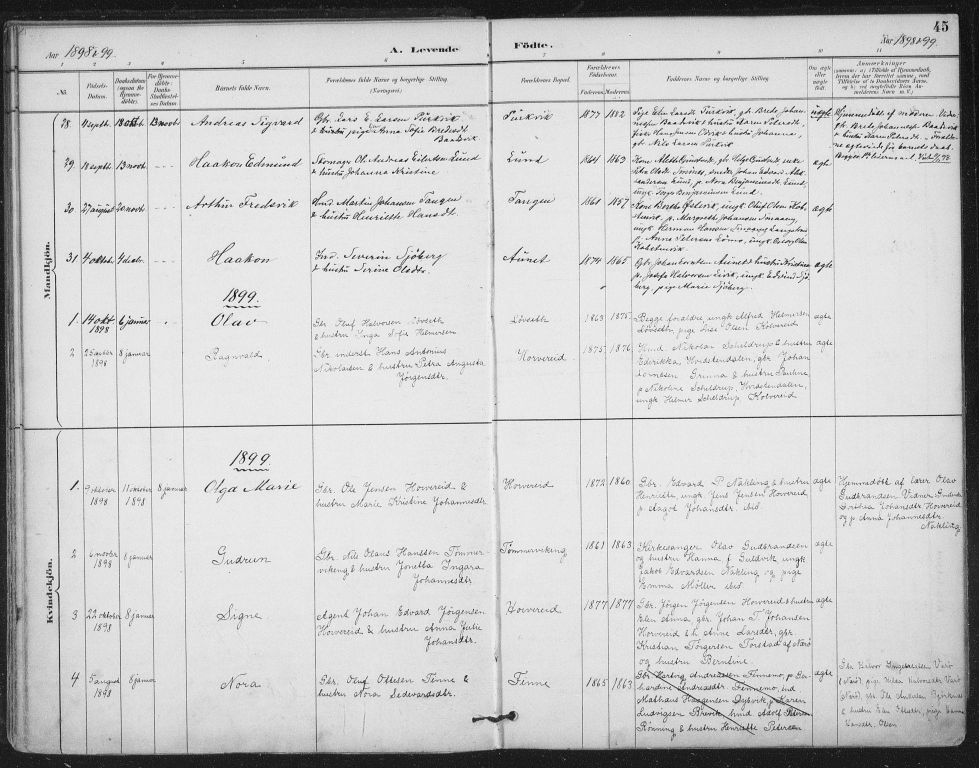SAT, Ministerialprotokoller, klokkerbøker og fødselsregistre - Nord-Trøndelag, 780/L0644: Ministerialbok nr. 780A08, 1886-1903, s. 45