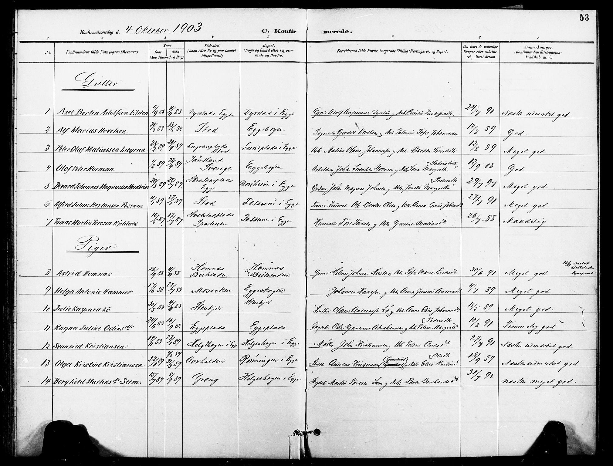 SAT, Ministerialprotokoller, klokkerbøker og fødselsregistre - Nord-Trøndelag, 740/L0379: Ministerialbok nr. 740A02, 1895-1907, s. 53