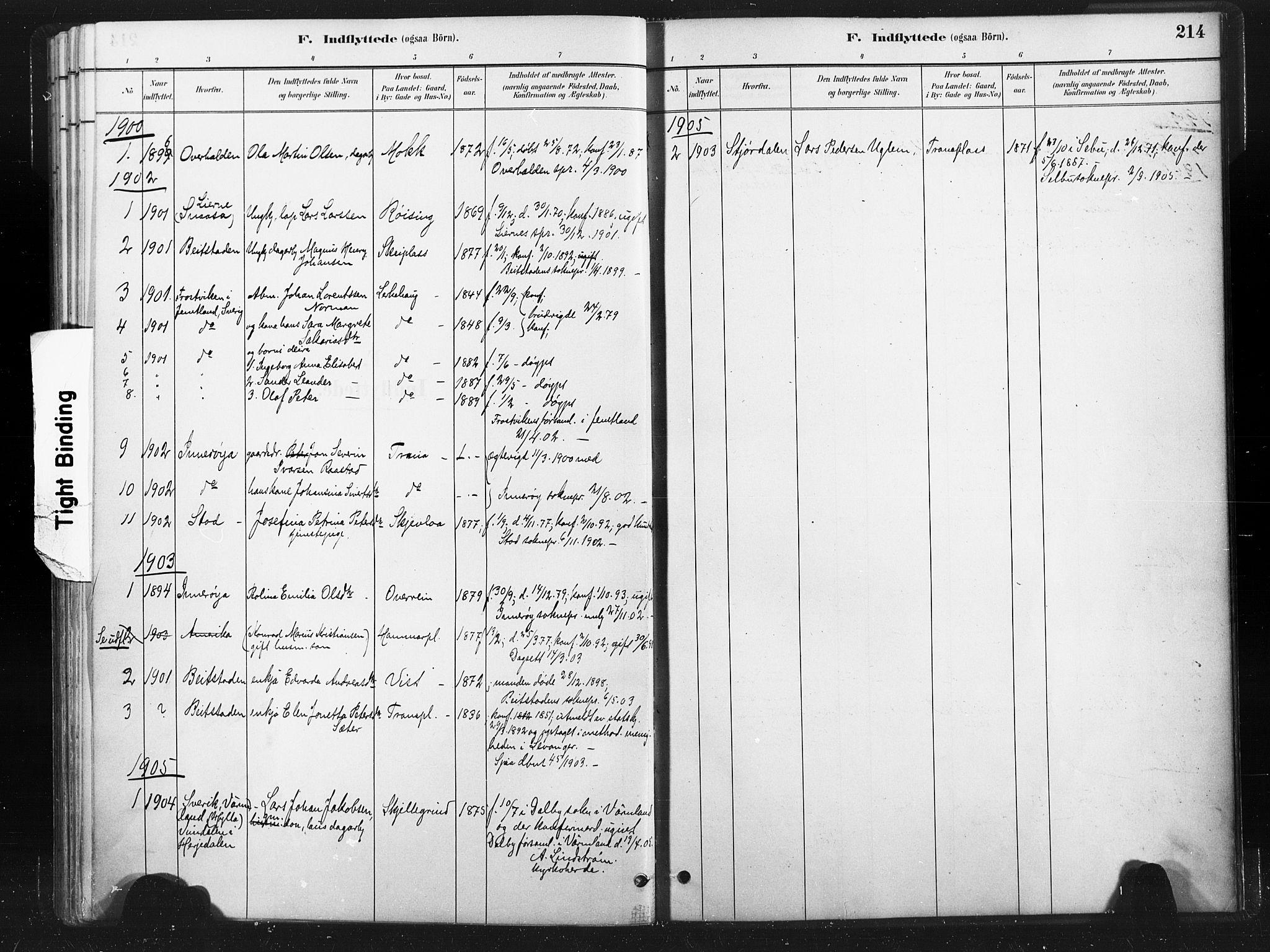 SAT, Ministerialprotokoller, klokkerbøker og fødselsregistre - Nord-Trøndelag, 736/L0361: Ministerialbok nr. 736A01, 1884-1906, s. 214