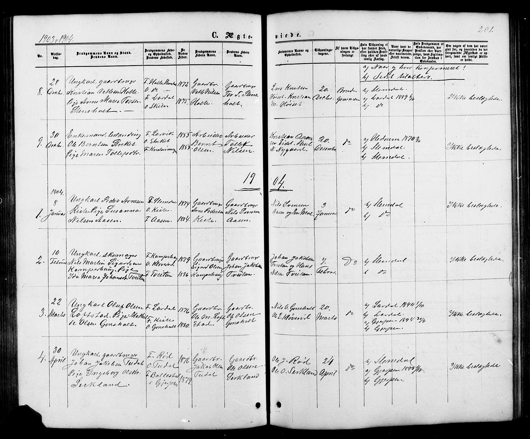 SAKO, Siljan kirkebøker, G/Ga/L0002: Klokkerbok nr. 2, 1864-1908, s. 201