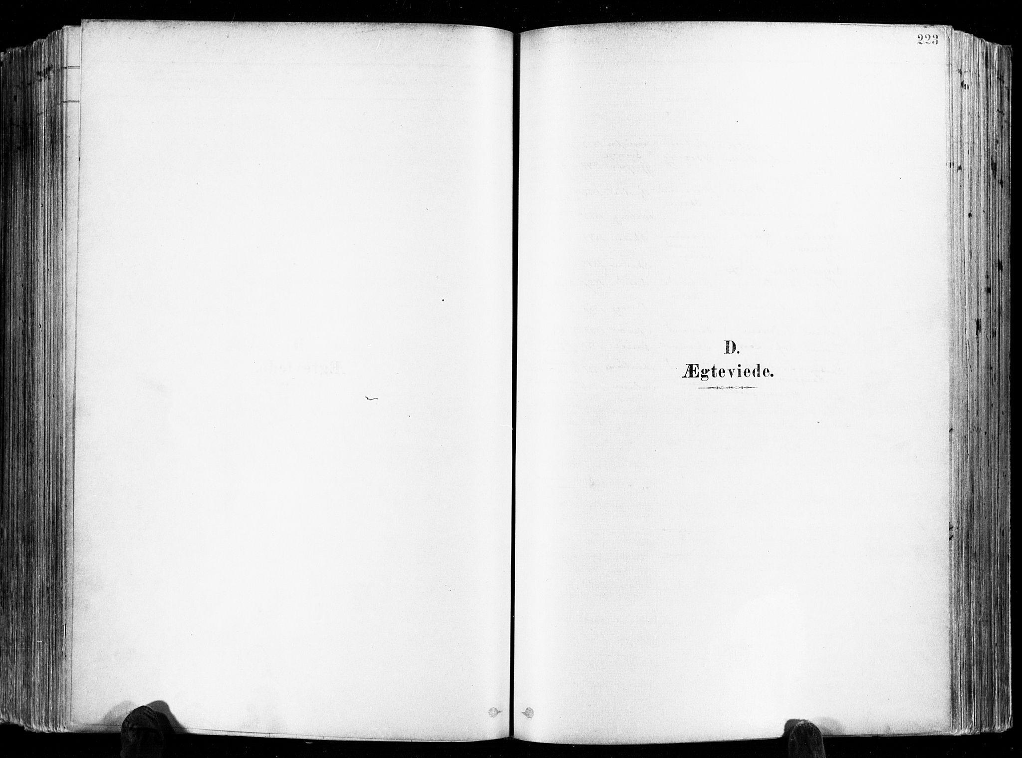 SAKO, Skien kirkebøker, F/Fa/L0009: Ministerialbok nr. 9, 1878-1890, s. 223