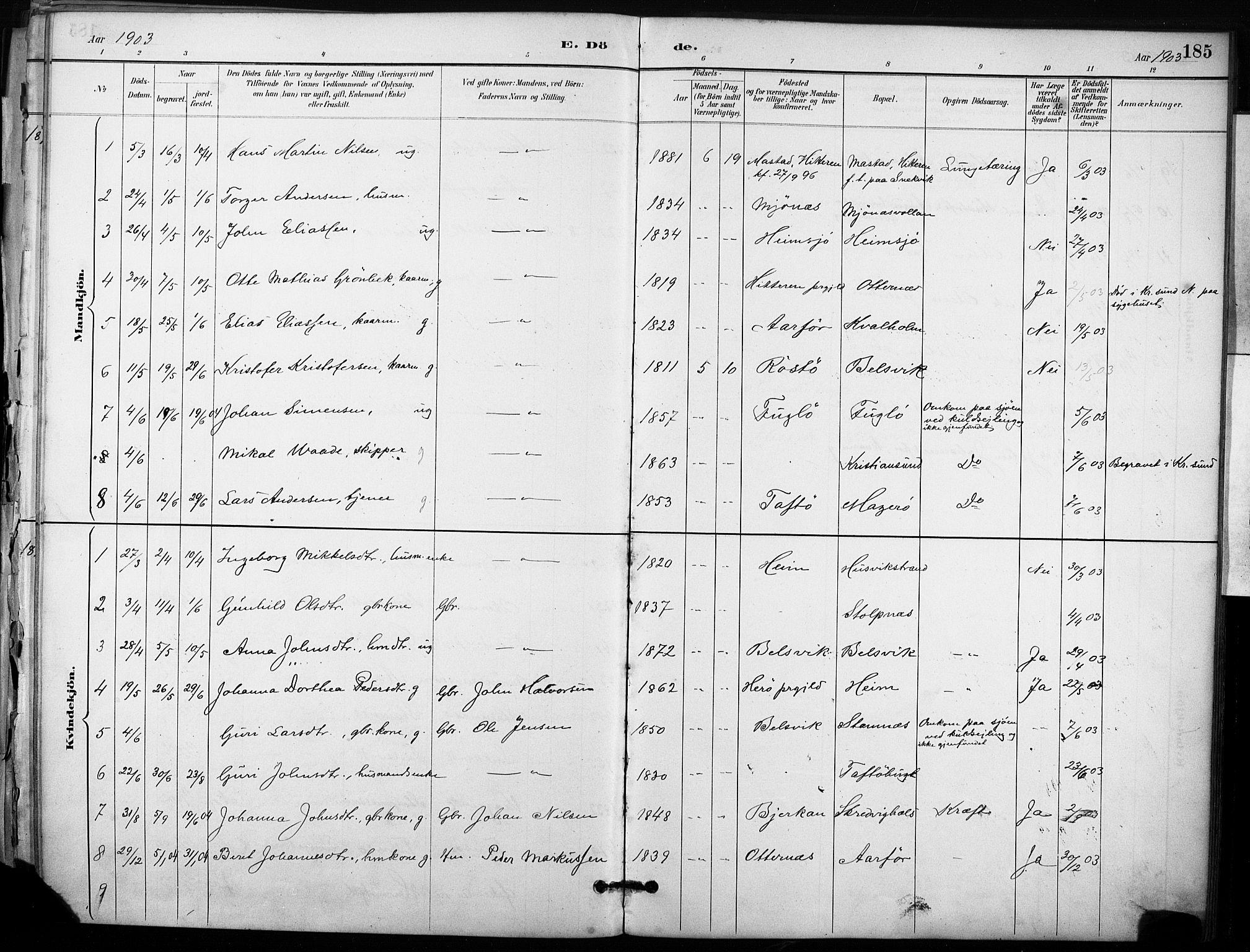 SAT, Ministerialprotokoller, klokkerbøker og fødselsregistre - Sør-Trøndelag, 633/L0518: Ministerialbok nr. 633A01, 1884-1906, s. 185