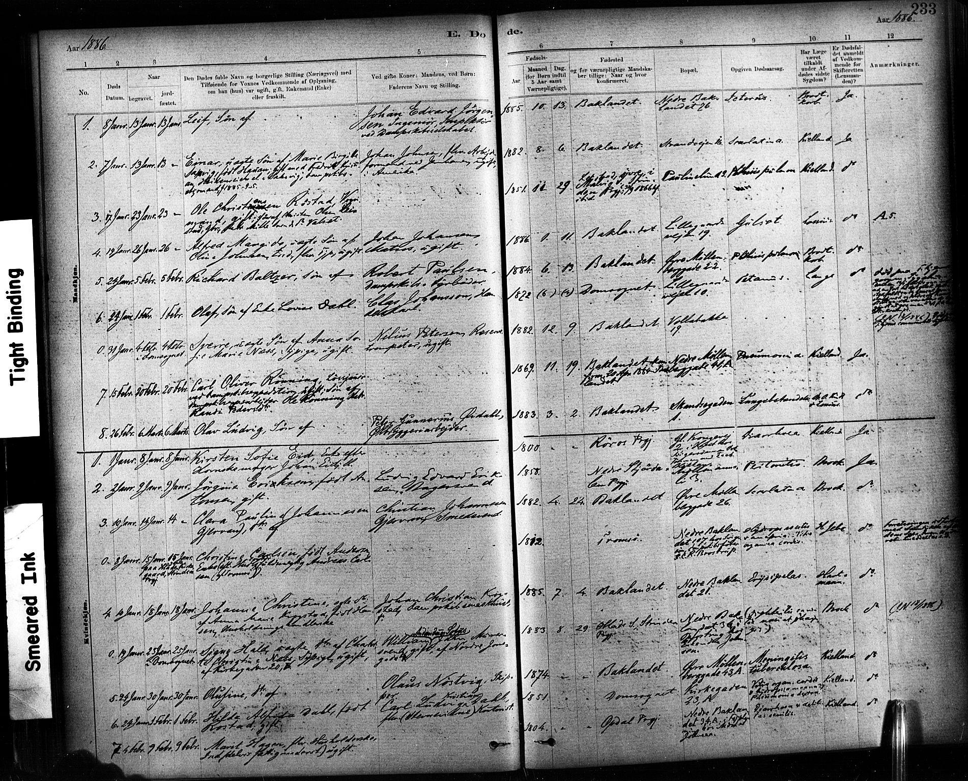 SAT, Ministerialprotokoller, klokkerbøker og fødselsregistre - Sør-Trøndelag, 604/L0189: Ministerialbok nr. 604A10, 1878-1892, s. 233