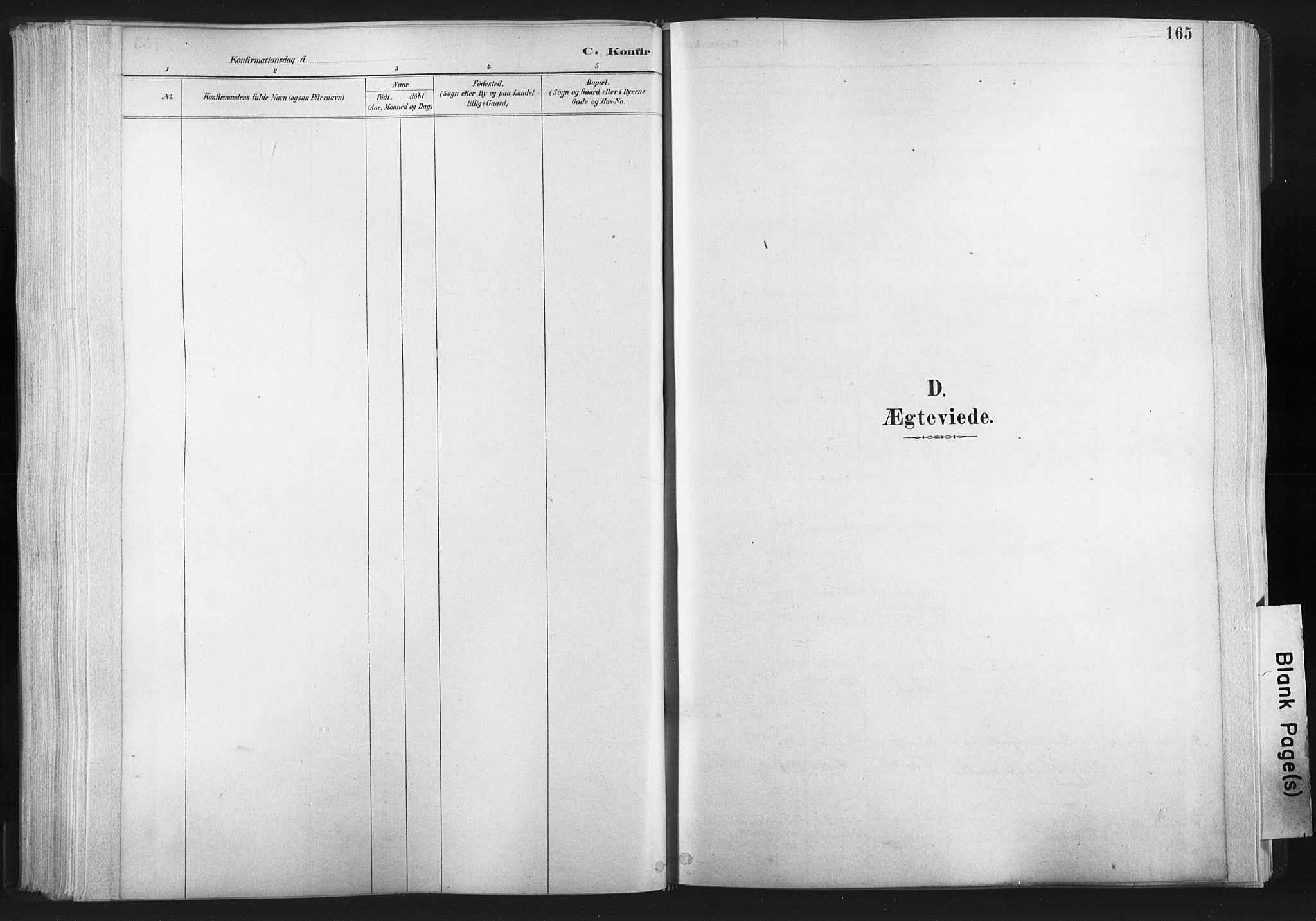 SAT, Ministerialprotokoller, klokkerbøker og fødselsregistre - Nord-Trøndelag, 749/L0474: Ministerialbok nr. 749A08, 1887-1903, s. 165