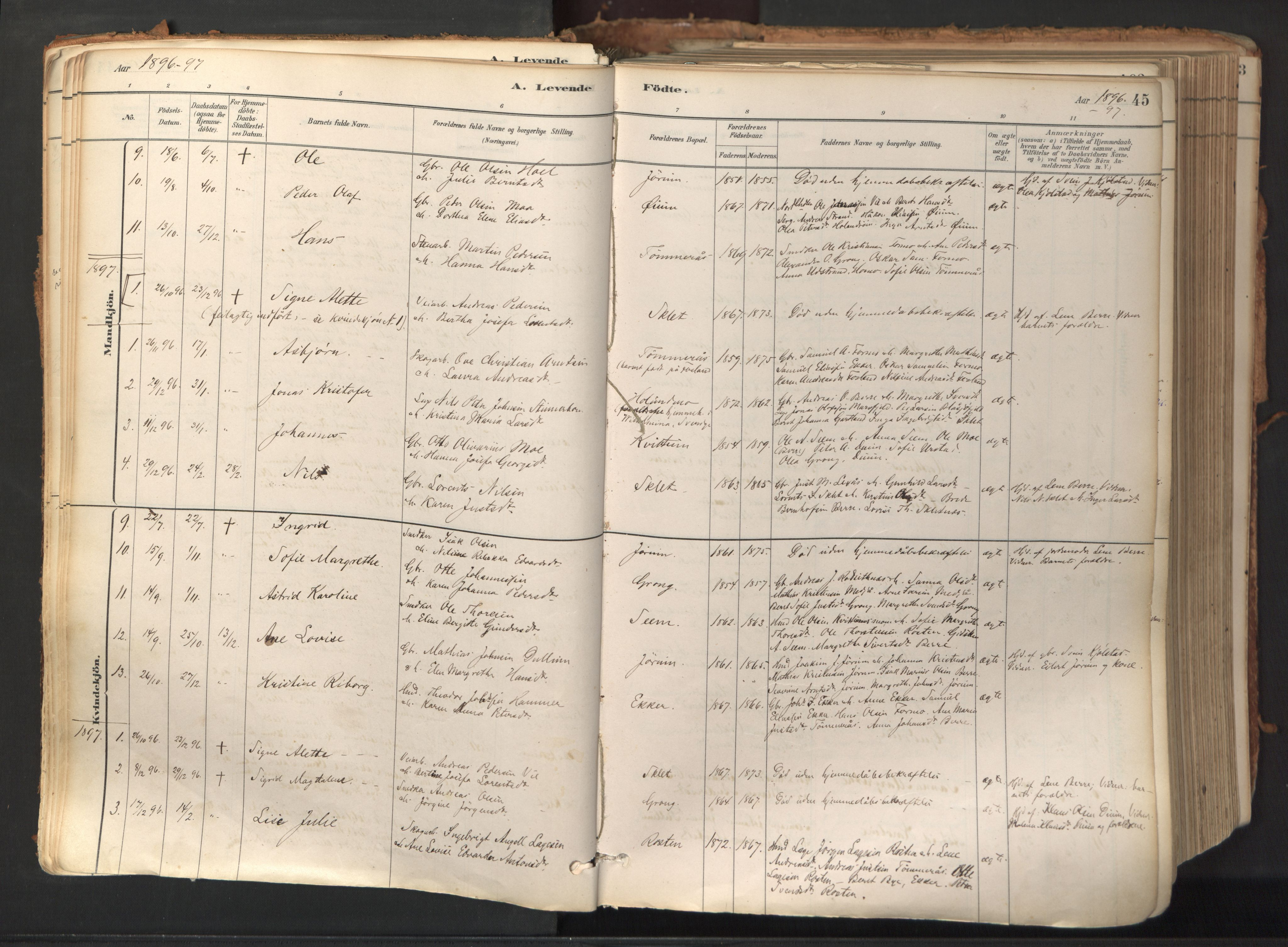 SAT, Ministerialprotokoller, klokkerbøker og fødselsregistre - Nord-Trøndelag, 758/L0519: Ministerialbok nr. 758A04, 1880-1926, s. 45