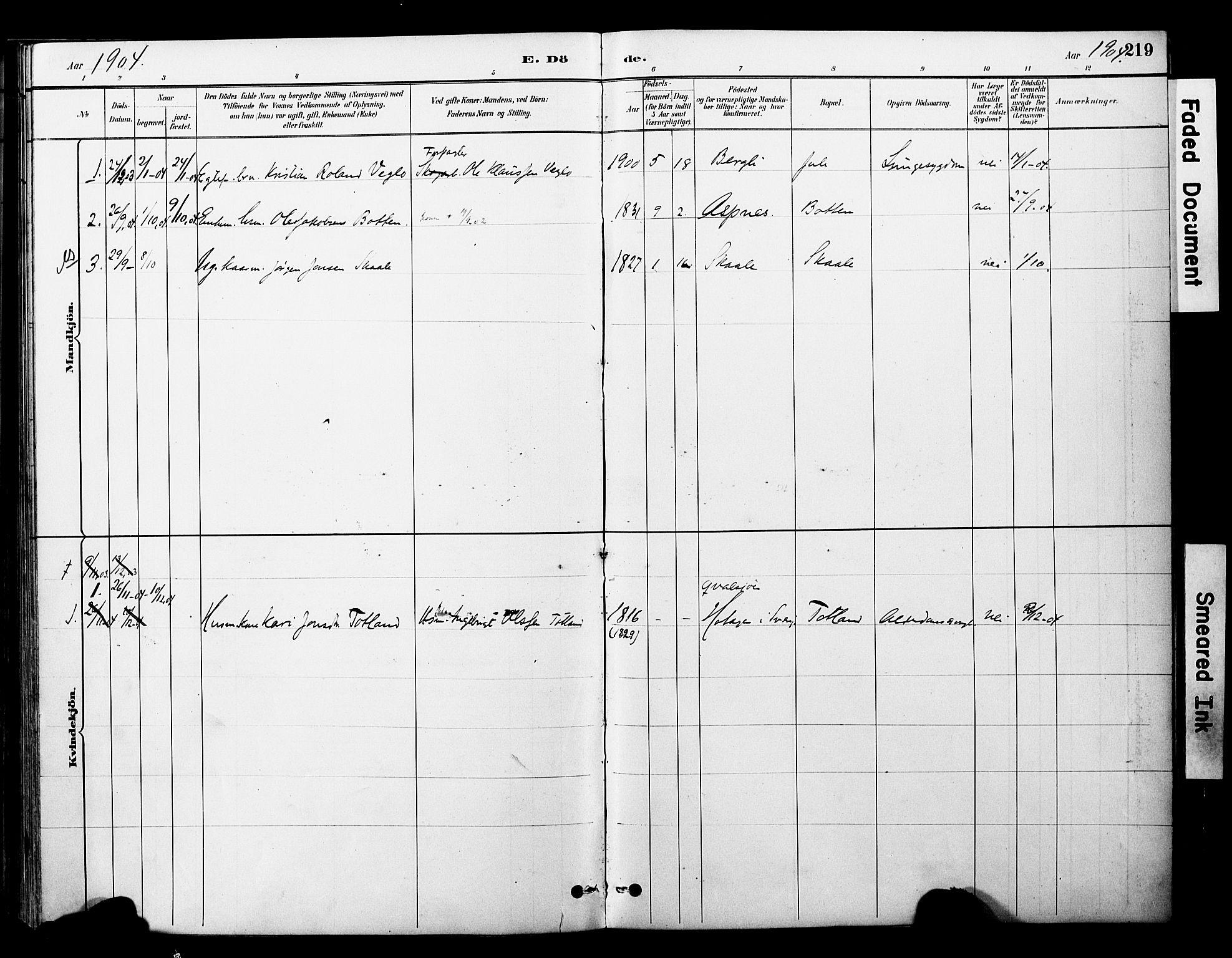SAT, Ministerialprotokoller, klokkerbøker og fødselsregistre - Nord-Trøndelag, 757/L0505: Ministerialbok nr. 757A01, 1882-1904, s. 219