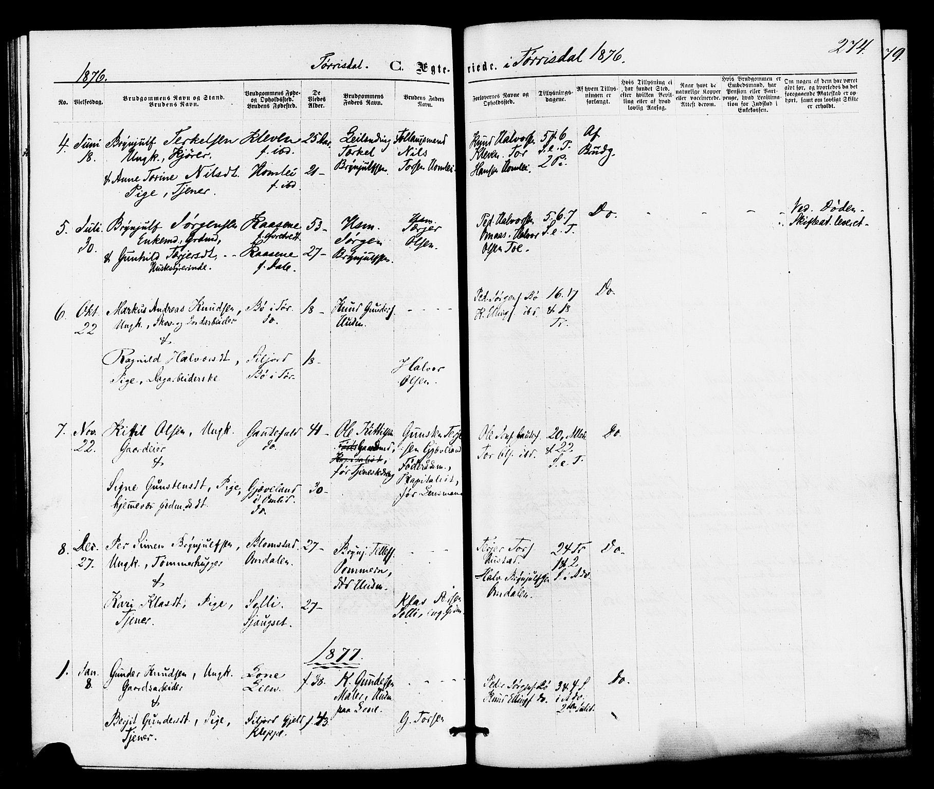 SAKO, Drangedal kirkebøker, F/Fa/L0009: Ministerialbok nr. 9 /2, 1872-1884, s. 274