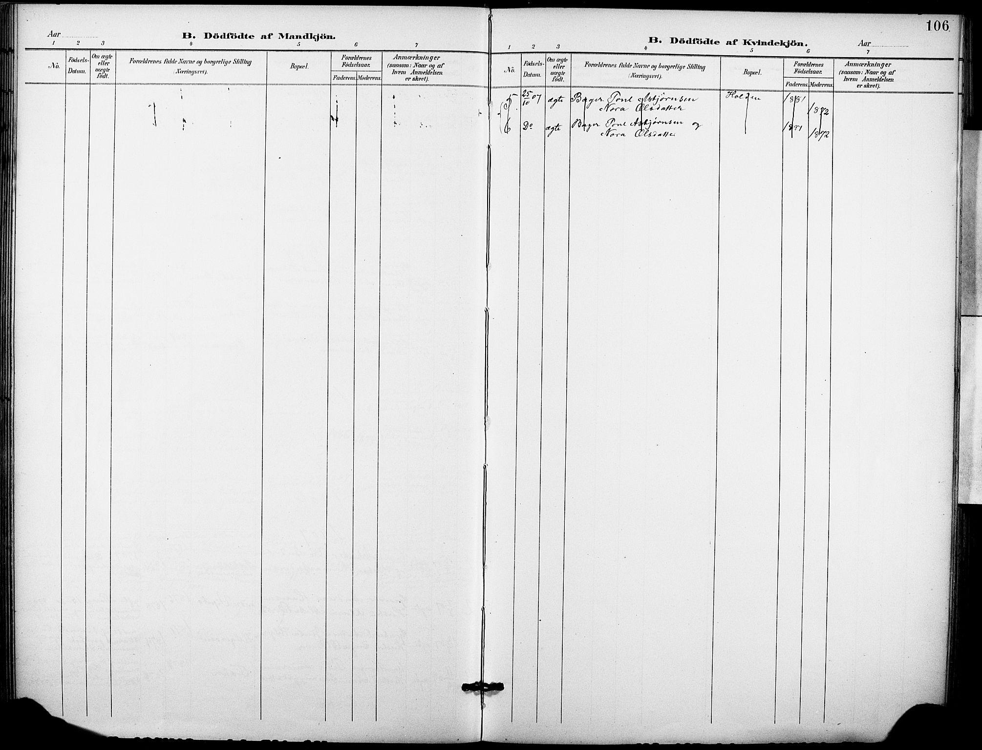 SAKO, Holla kirkebøker, F/Fa/L0010: Ministerialbok nr. 10, 1897-1907, s. 106