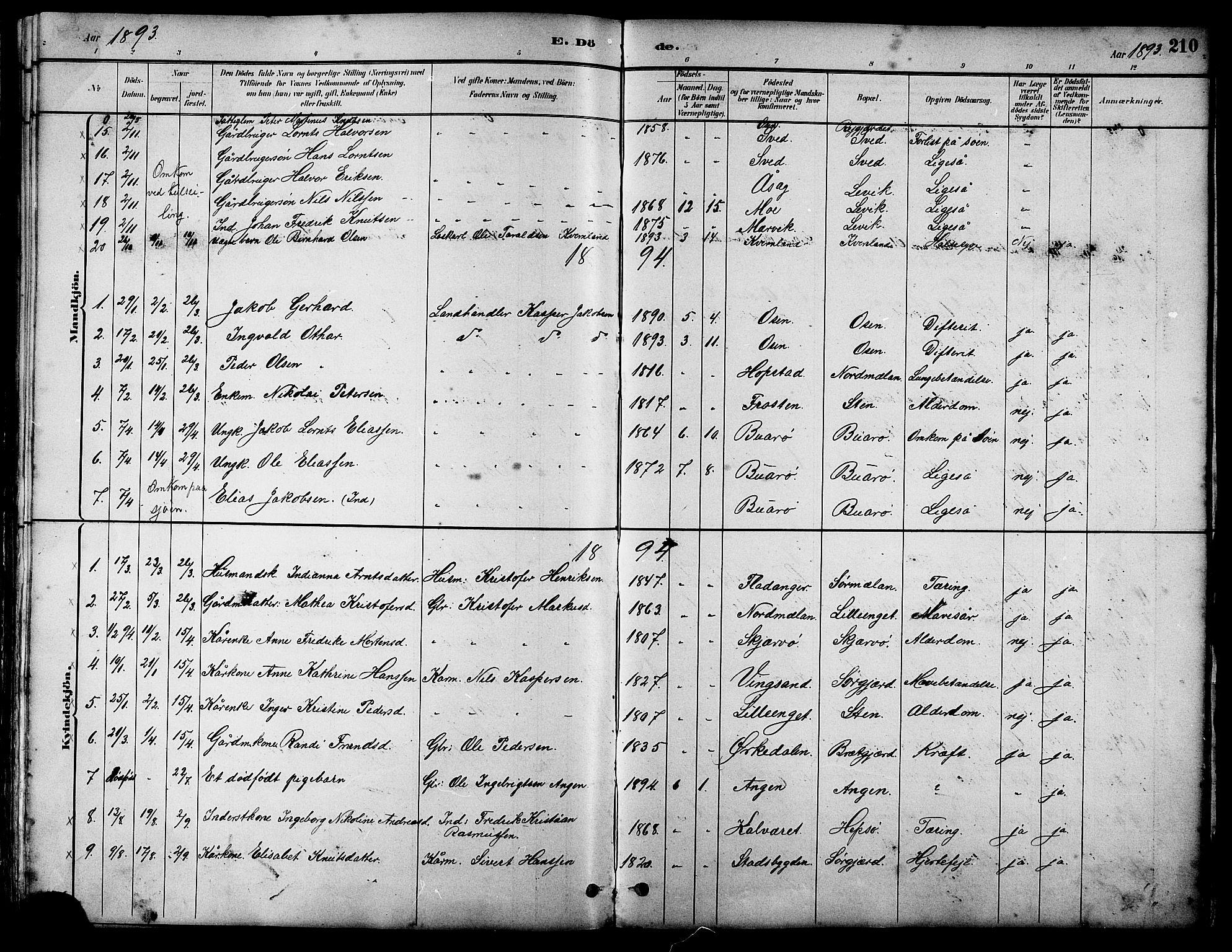 SAT, Ministerialprotokoller, klokkerbøker og fødselsregistre - Sør-Trøndelag, 658/L0726: Klokkerbok nr. 658C02, 1883-1908, s. 210