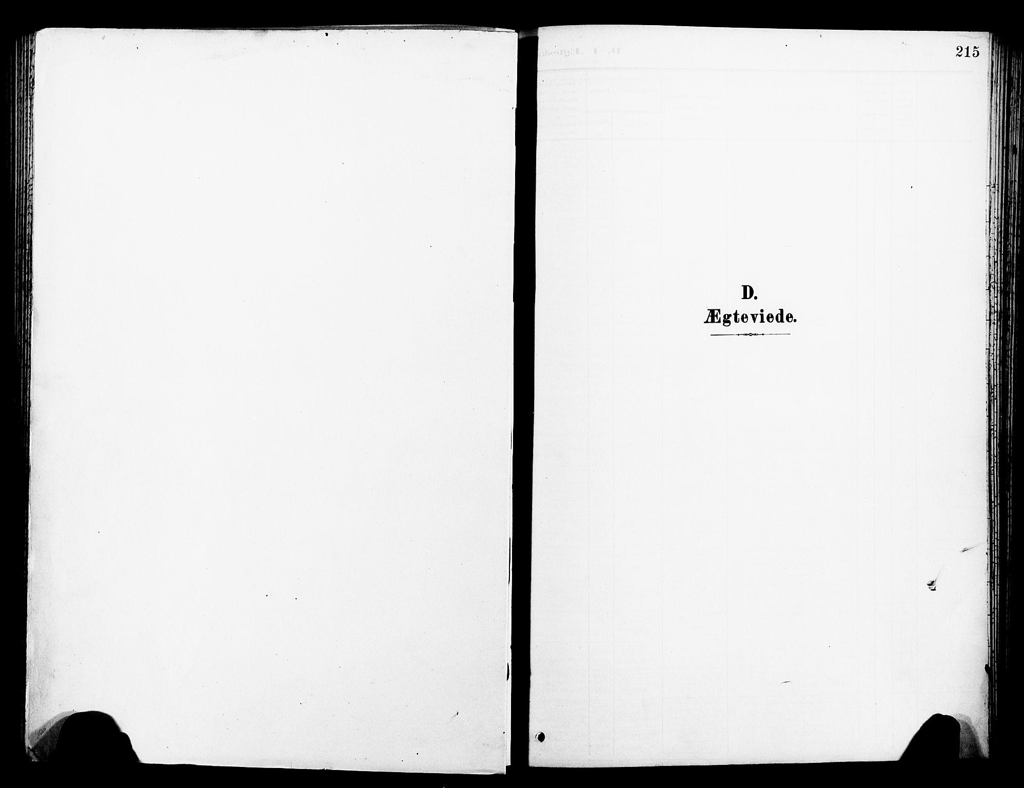 SAT, Ministerialprotokoller, klokkerbøker og fødselsregistre - Sør-Trøndelag, 681/L0942: Klokkerbok nr. 681C06, 1906-1925, s. 215