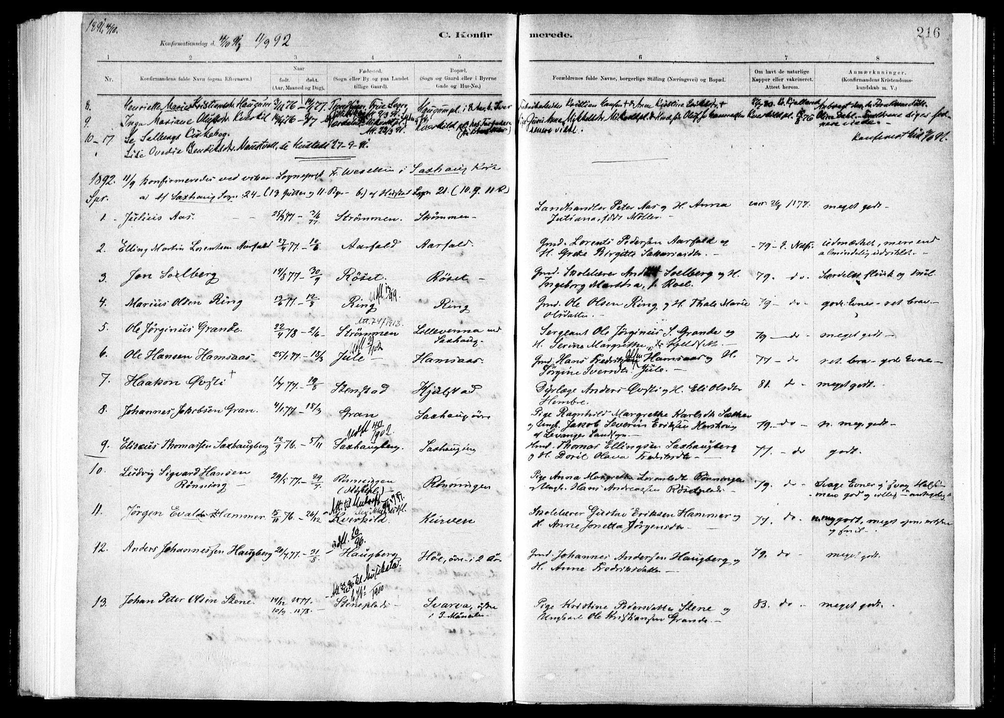 SAT, Ministerialprotokoller, klokkerbøker og fødselsregistre - Nord-Trøndelag, 730/L0285: Ministerialbok nr. 730A10, 1879-1914, s. 216