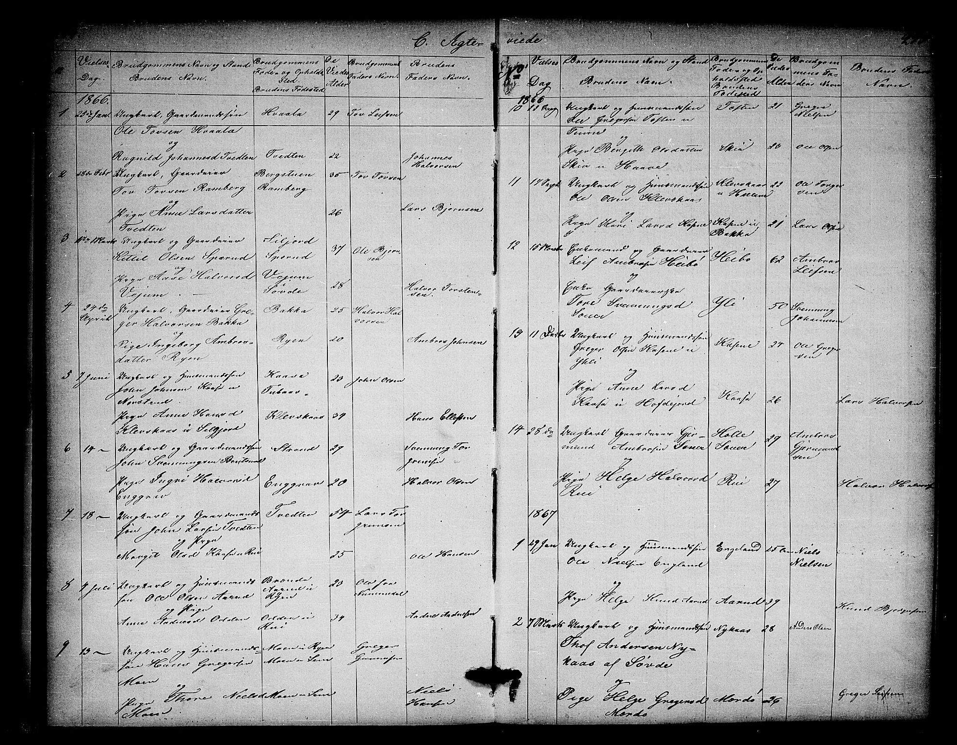 SAKO, Heddal kirkebøker, G/Ga/L0001: Klokkerbok nr. I 1, 1866-1878, s. 294-295