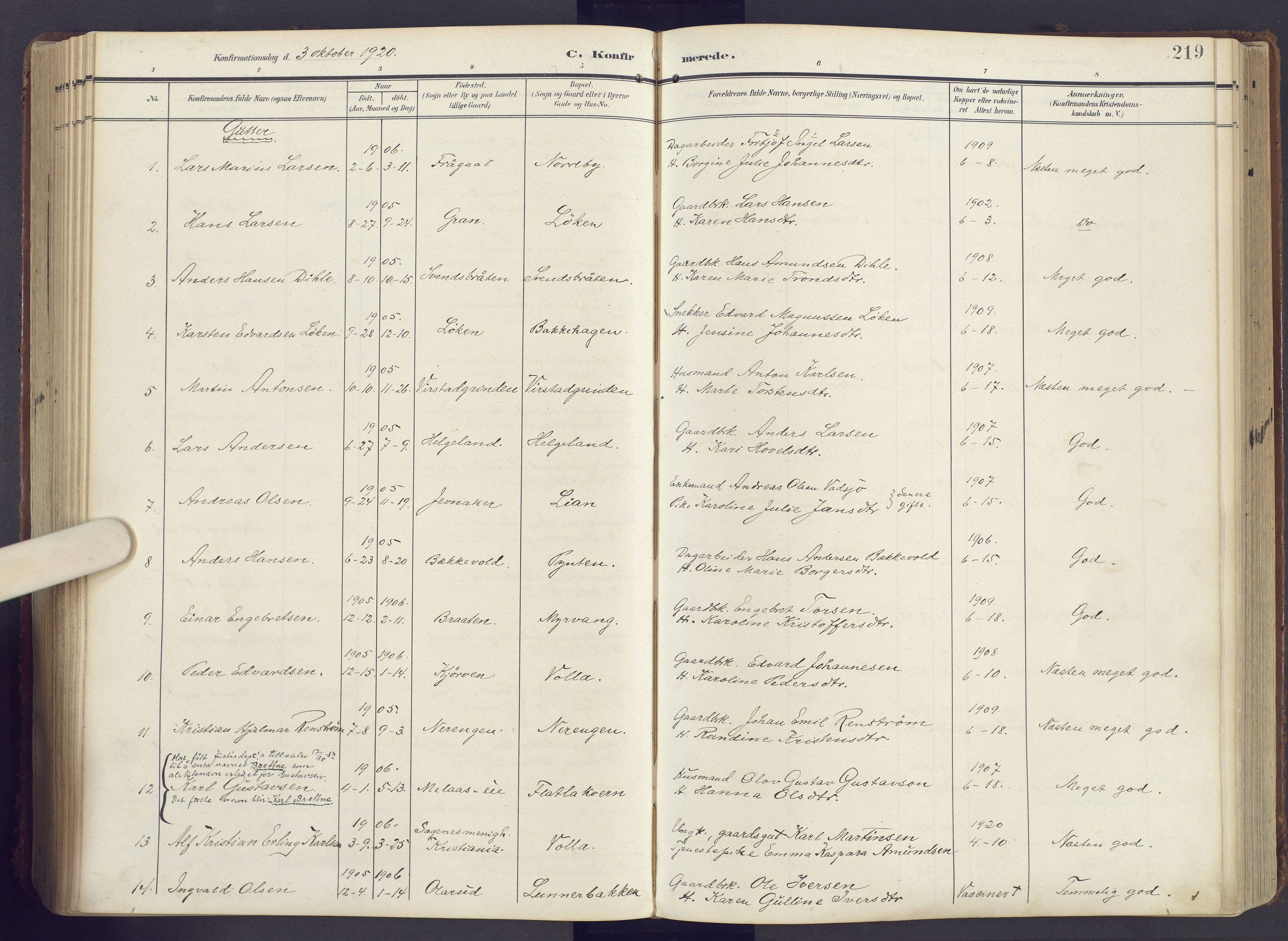 SAH, Lunner prestekontor, H/Ha/Haa/L0001: Ministerialbok nr. 1, 1907-1922, s. 219
