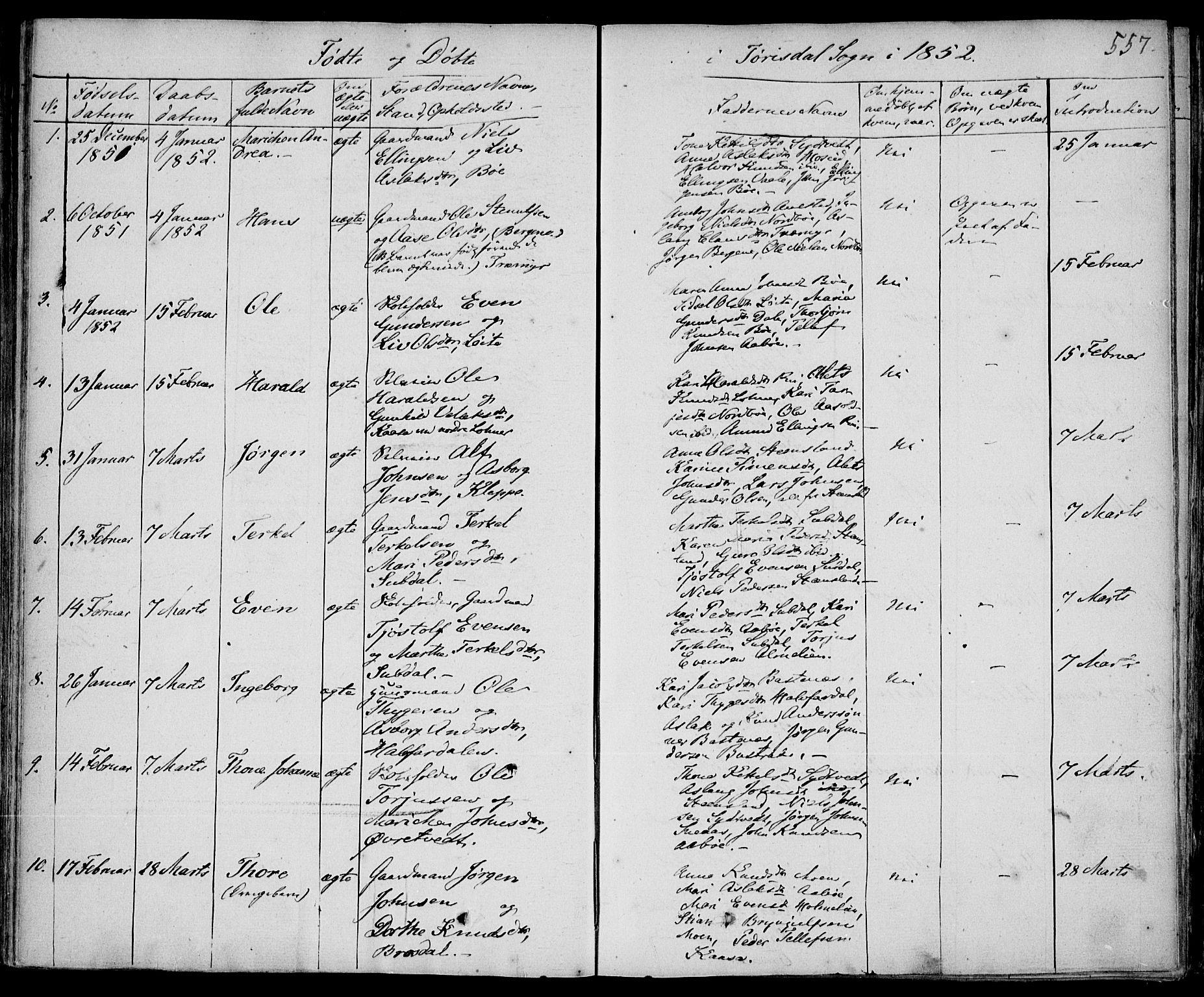 SAKO, Drangedal kirkebøker, F/Fa/L0007b: Ministerialbok nr. 7b, 1837-1856, s. 557