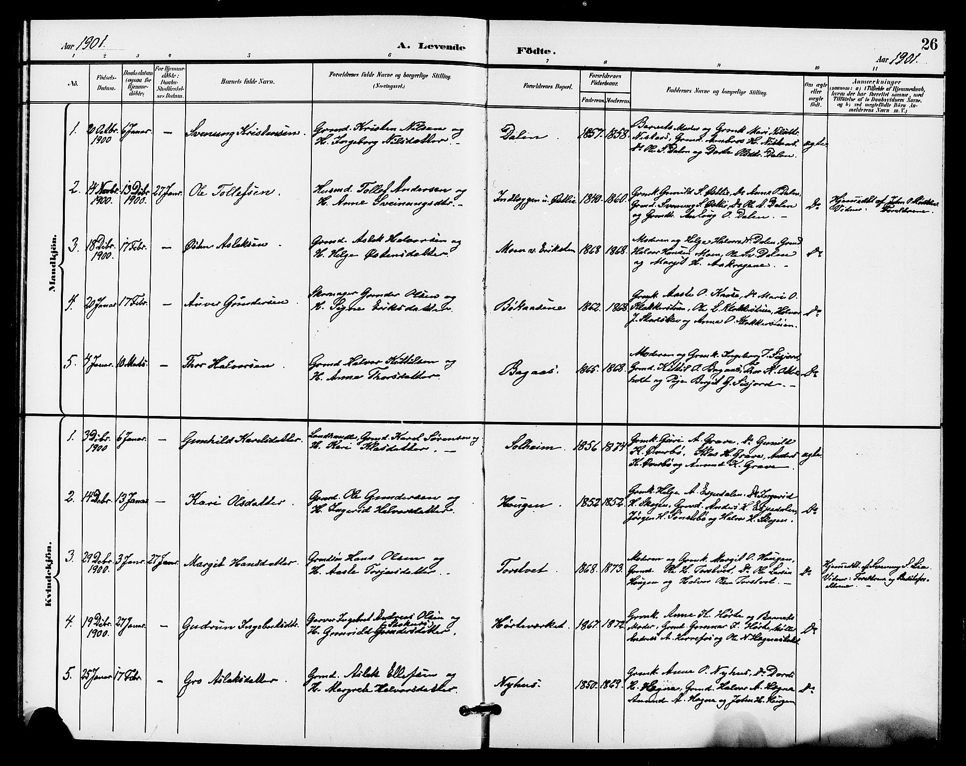 SAKO, Bø kirkebøker, G/Ga/L0006: Klokkerbok nr. 6, 1898-1909, s. 26