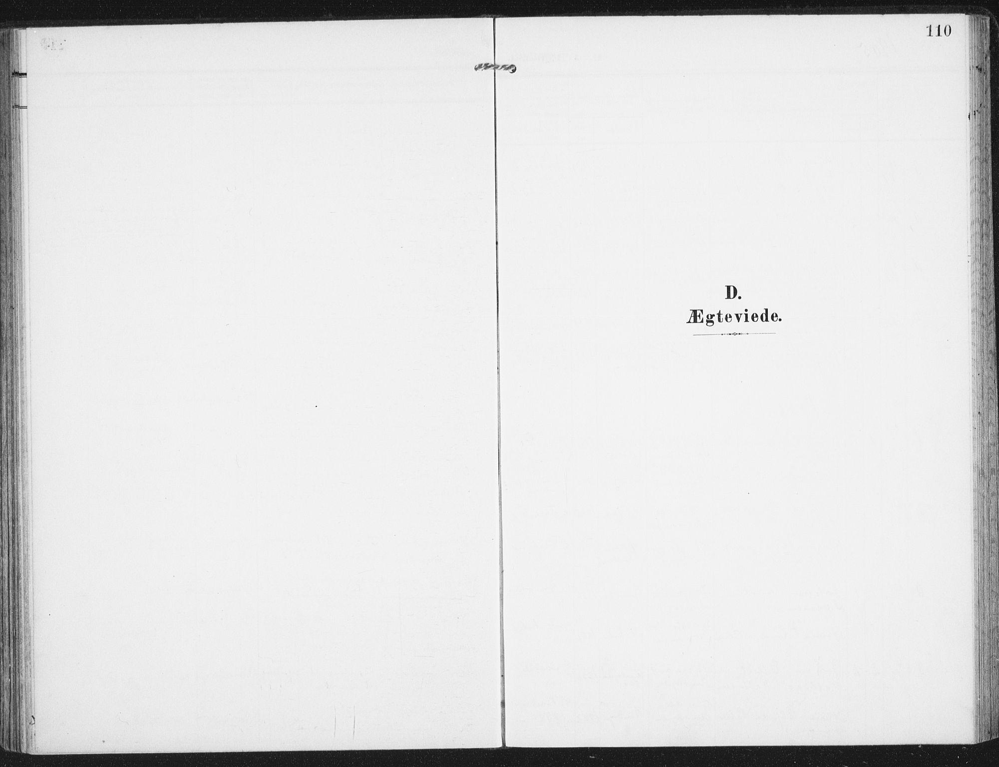 SAT, Ministerialprotokoller, klokkerbøker og fødselsregistre - Nordland, 885/L1206: Ministerialbok nr. 885A07, 1905-1915, s. 110