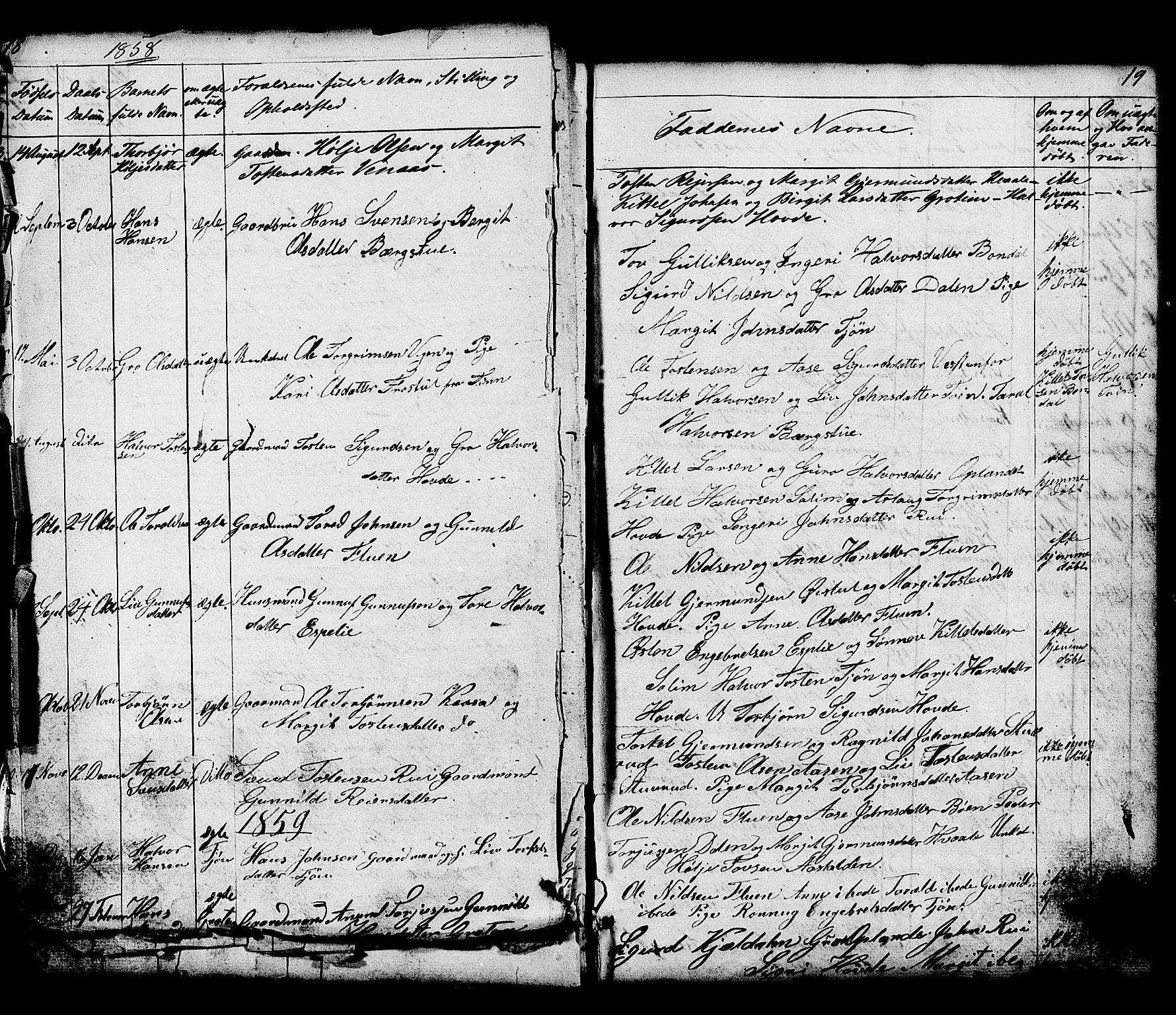 SAKO, Hjartdal kirkebøker, G/Gc/L0002: Klokkerbok nr. III 2, 1854-1890, s. 18-19
