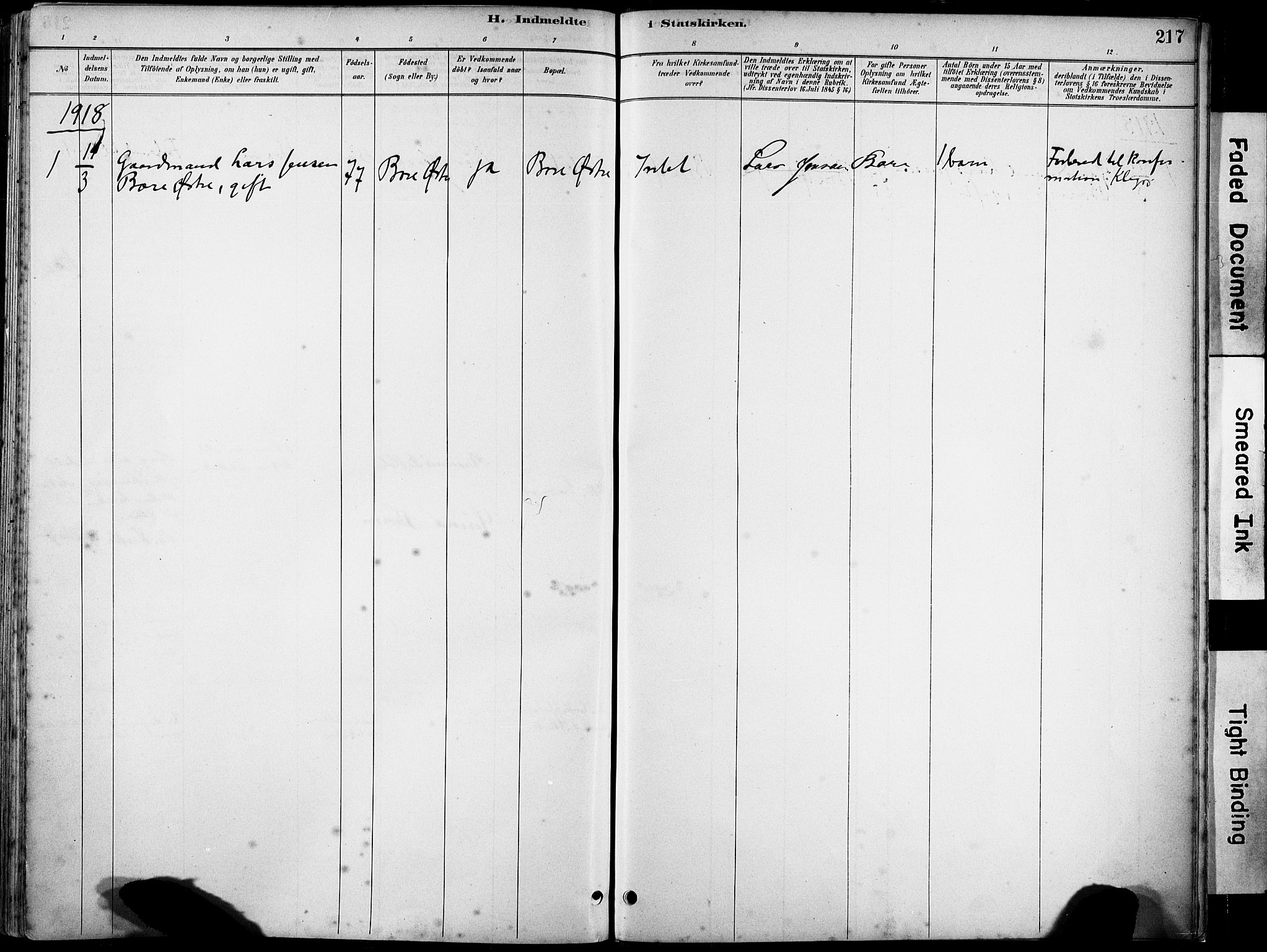 SAST, Klepp sokneprestkontor, 30BA/L0008: Ministerialbok nr. A 9, 1886-1919, s. 217