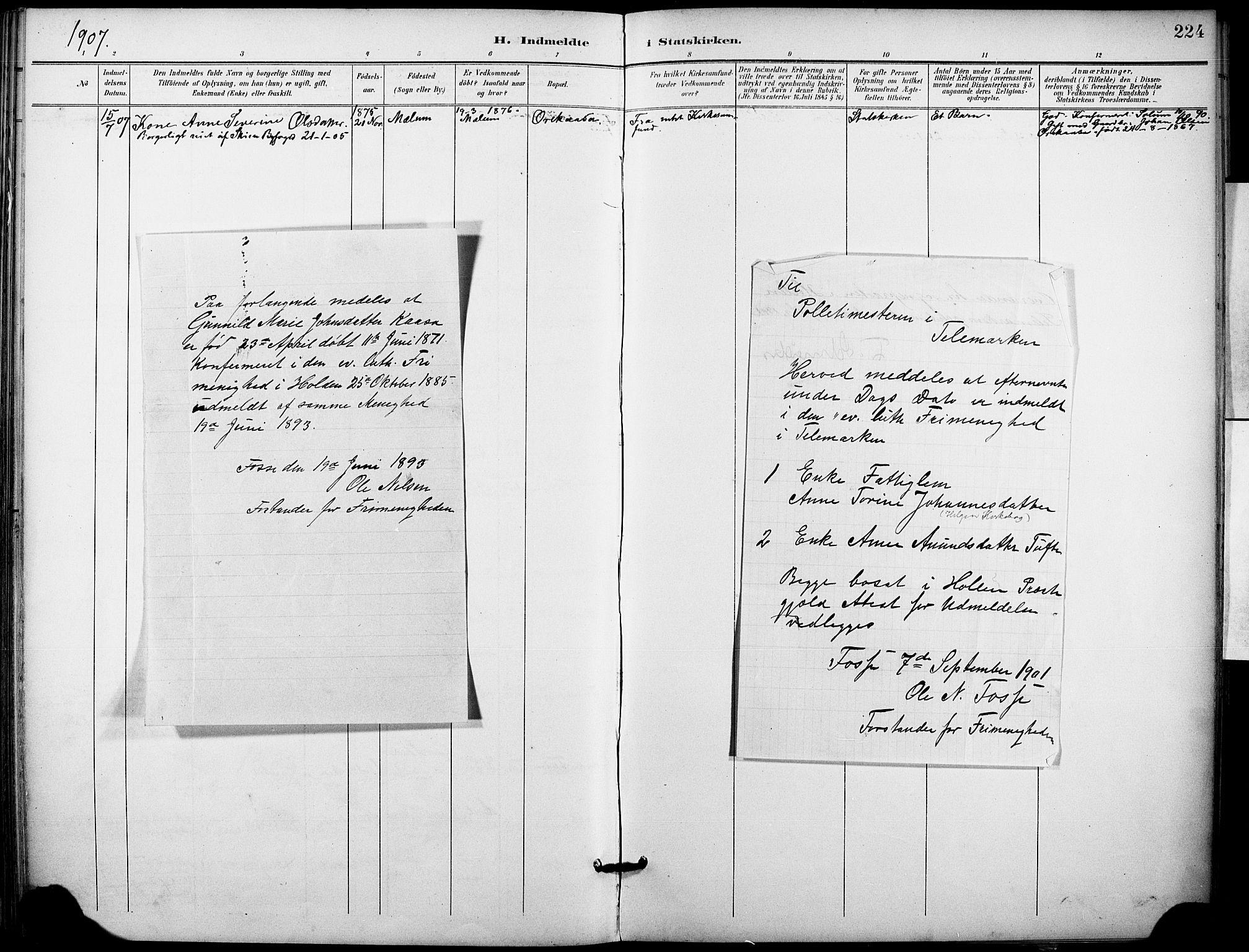 SAKO, Holla kirkebøker, F/Fa/L0010: Ministerialbok nr. 10, 1897-1907, s. 224
