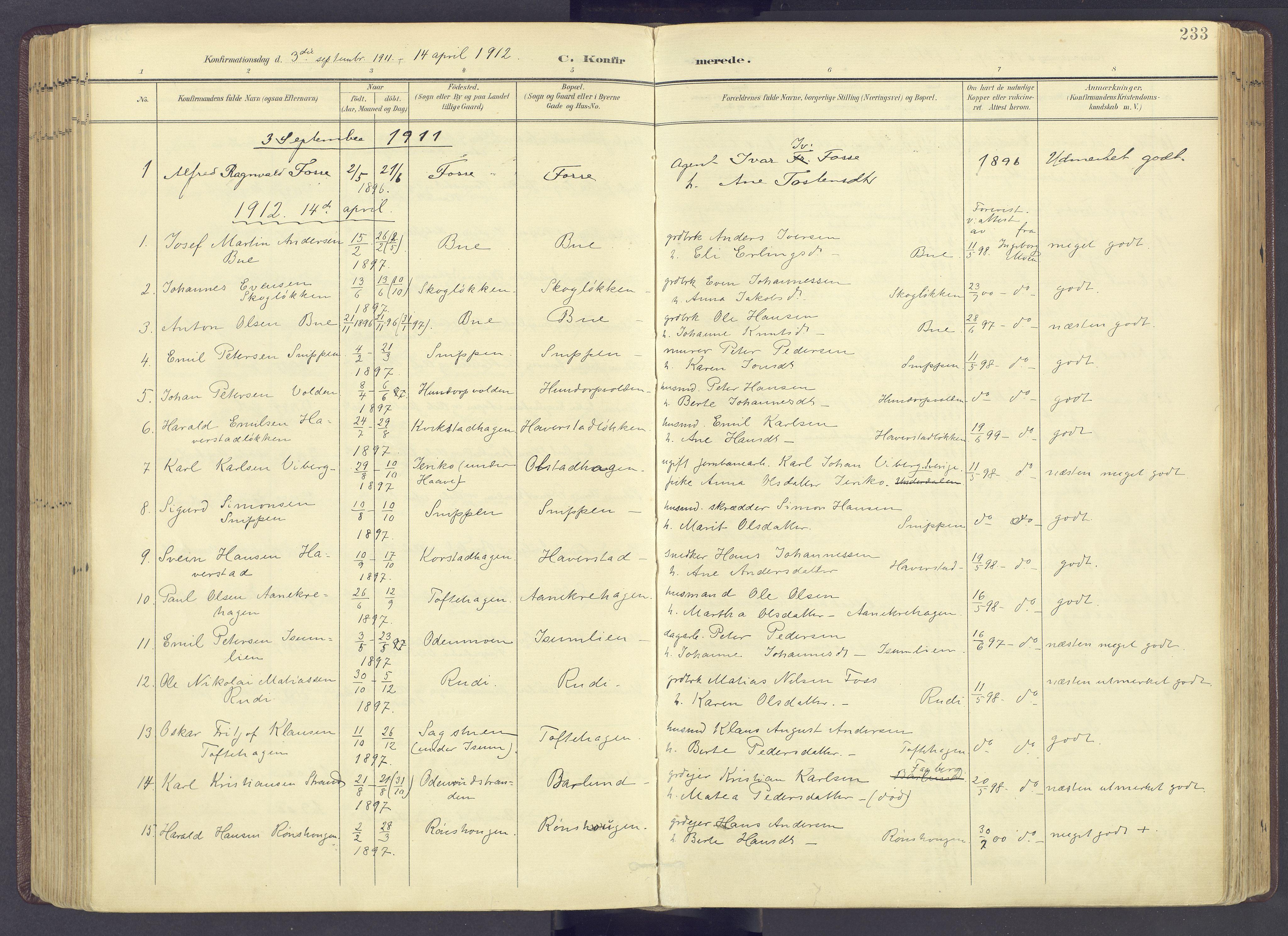 SAH, Sør-Fron prestekontor, H/Ha/Haa/L0004: Ministerialbok nr. 4, 1898-1919, s. 233