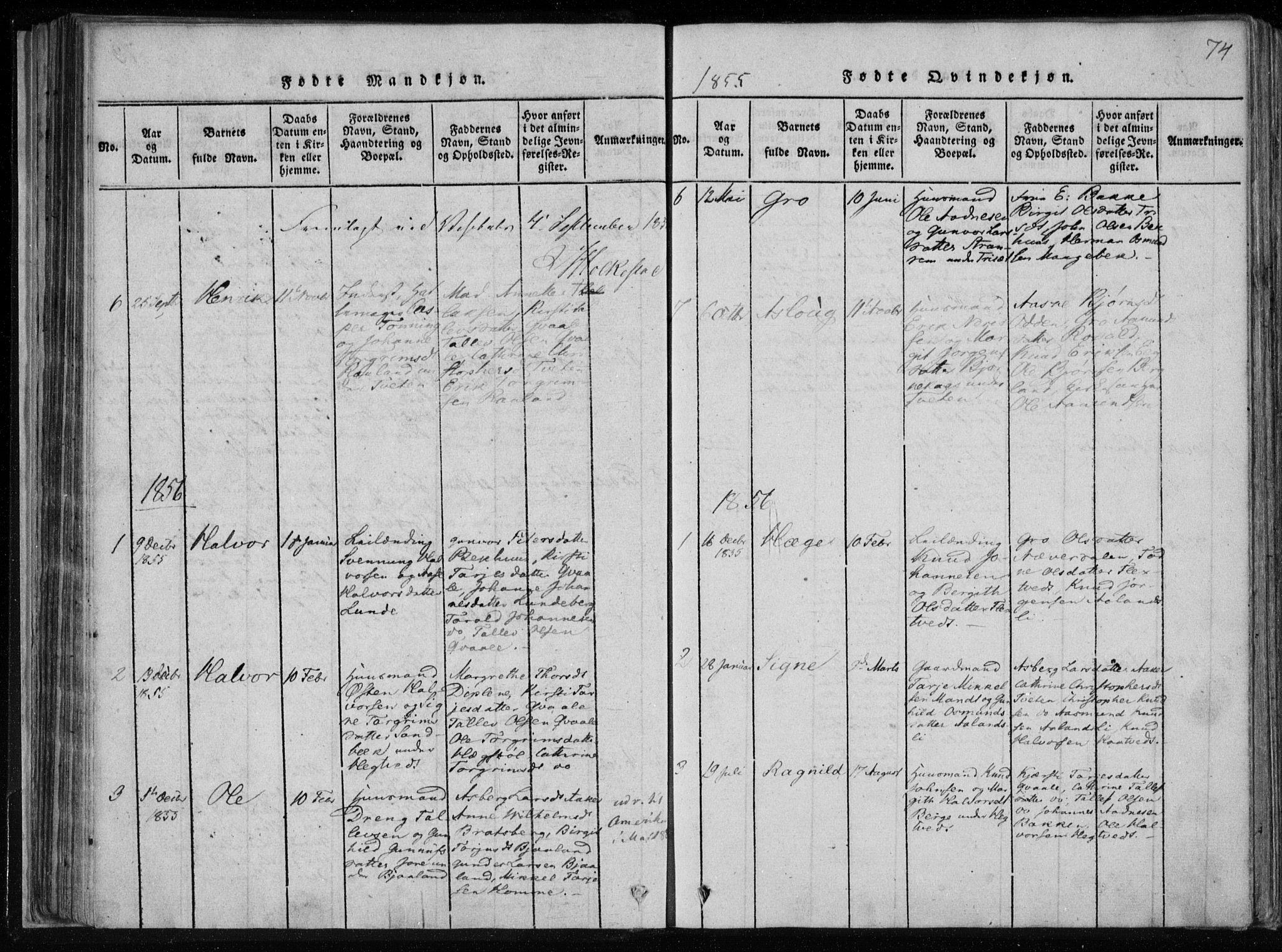 SAKO, Lårdal kirkebøker, F/Fa/L0005: Ministerialbok nr. I 5, 1815-1860, s. 74