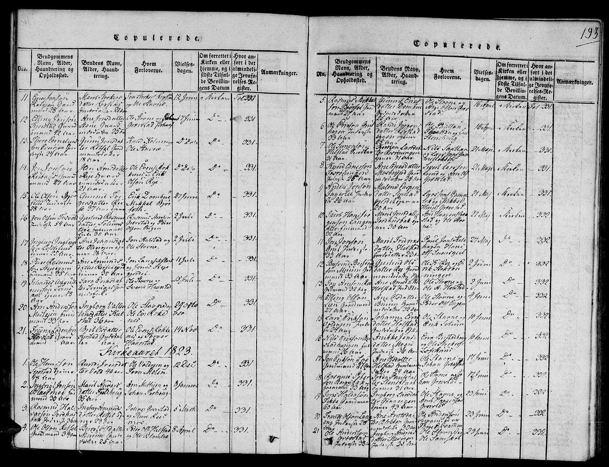 SAT, Ministerialprotokoller, klokkerbøker og fødselsregistre - Sør-Trøndelag, 672/L0853: Ministerialbok nr. 672A06 /1, 1816-1829, s. 193