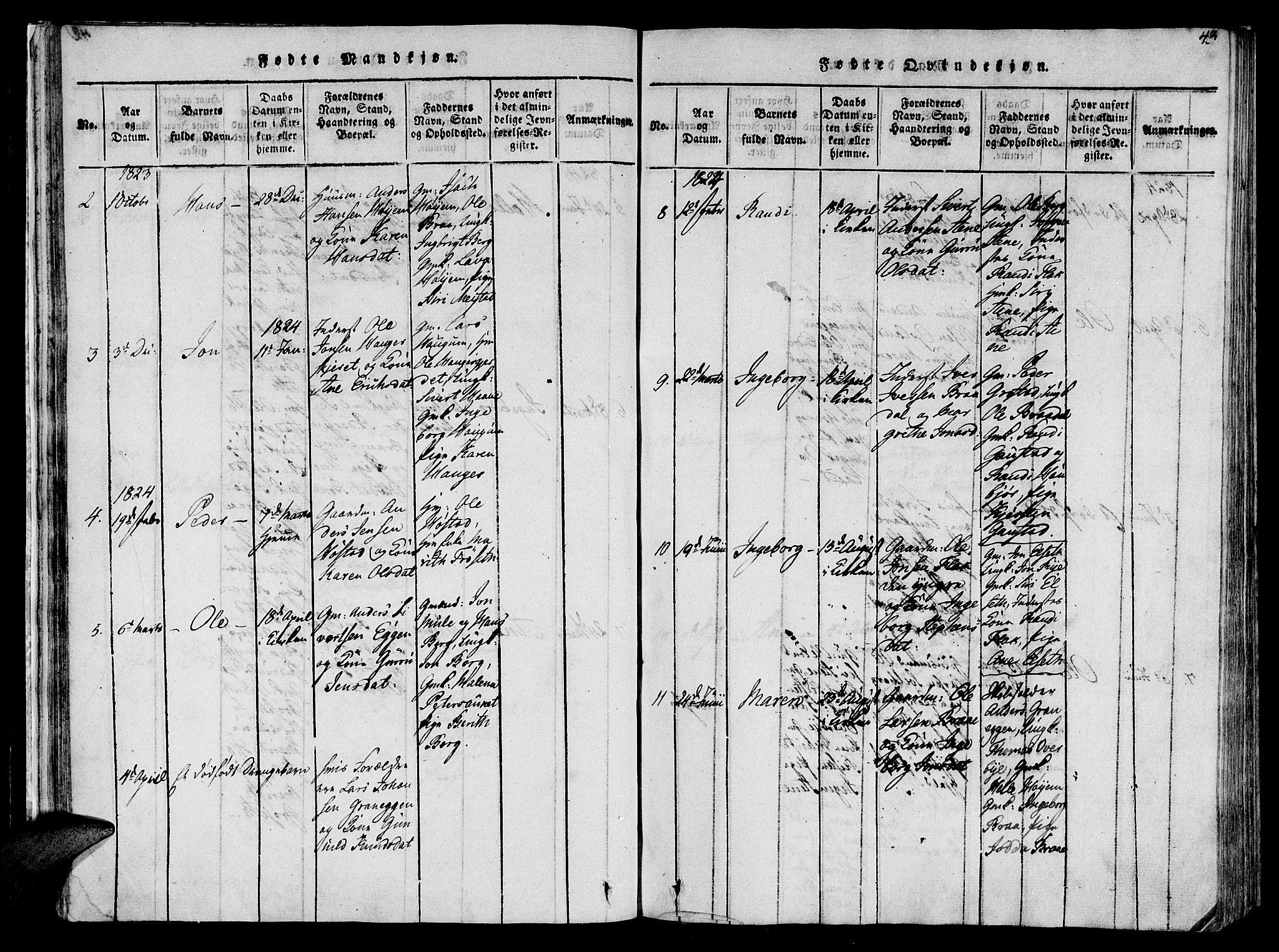 SAT, Ministerialprotokoller, klokkerbøker og fødselsregistre - Sør-Trøndelag, 612/L0372: Ministerialbok nr. 612A06 /1, 1816-1828, s. 43