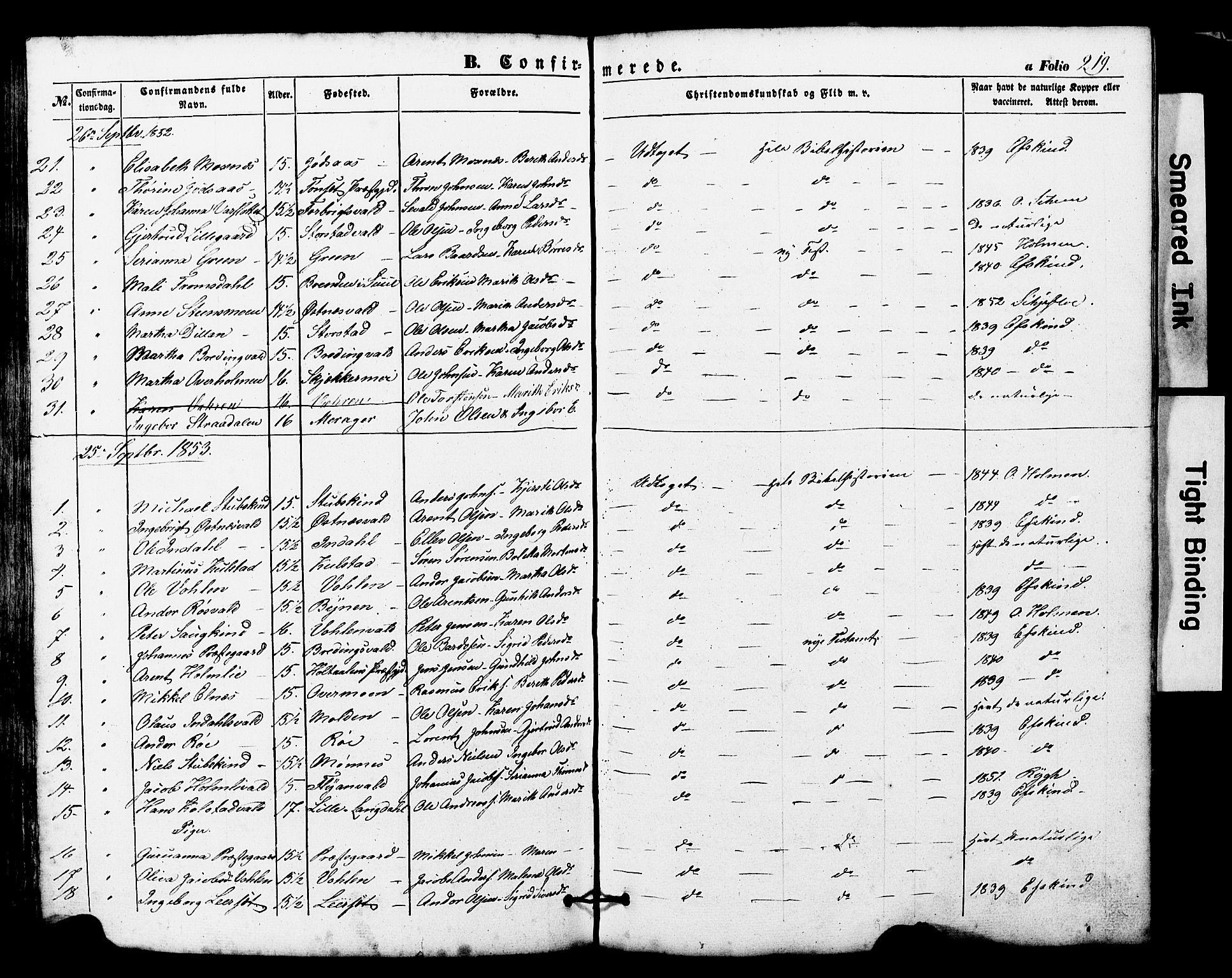 SAT, Ministerialprotokoller, klokkerbøker og fødselsregistre - Nord-Trøndelag, 724/L0268: Klokkerbok nr. 724C04, 1846-1878, s. 219