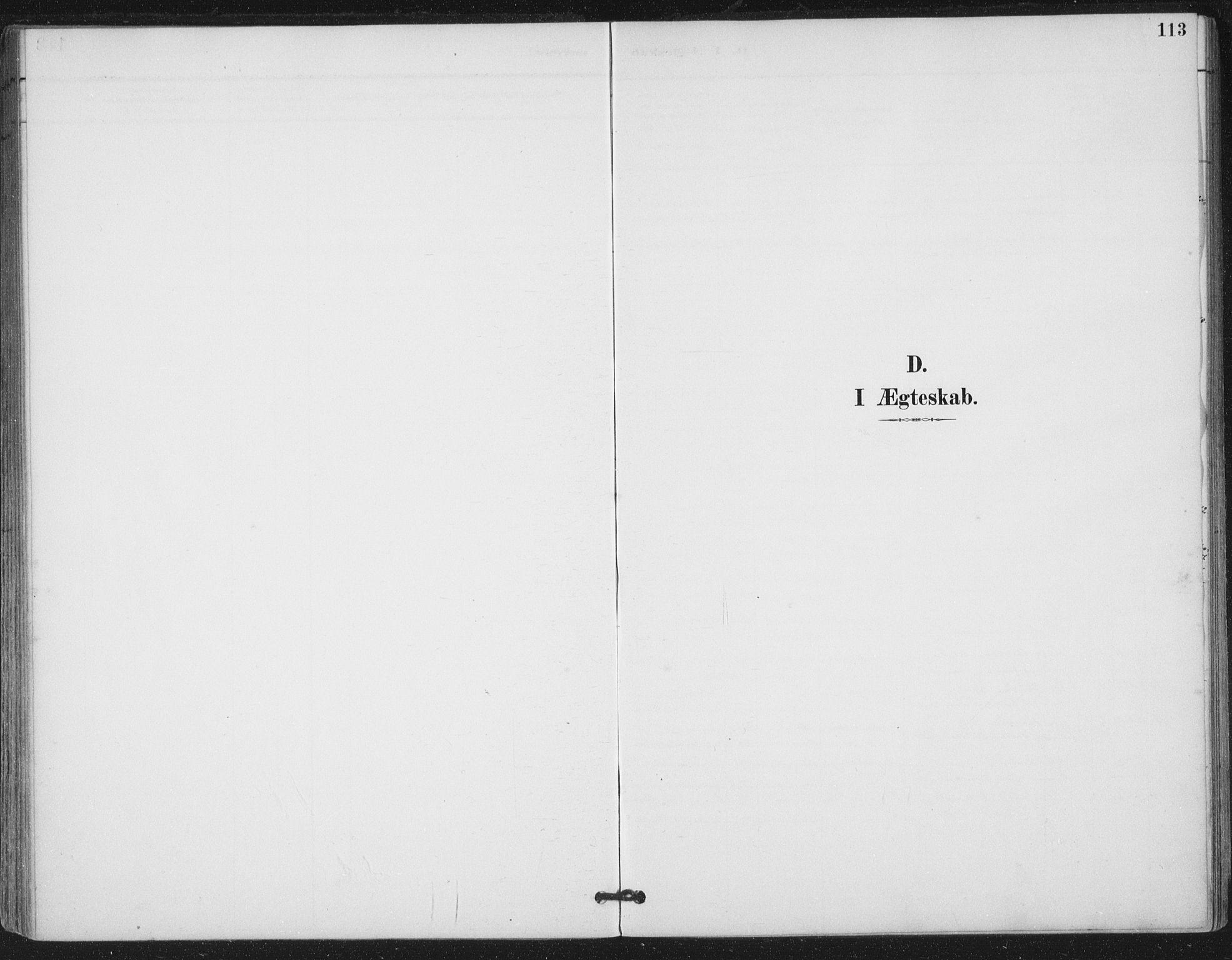 SAT, Ministerialprotokoller, klokkerbøker og fødselsregistre - Nord-Trøndelag, 780/L0644: Ministerialbok nr. 780A08, 1886-1903, s. 113