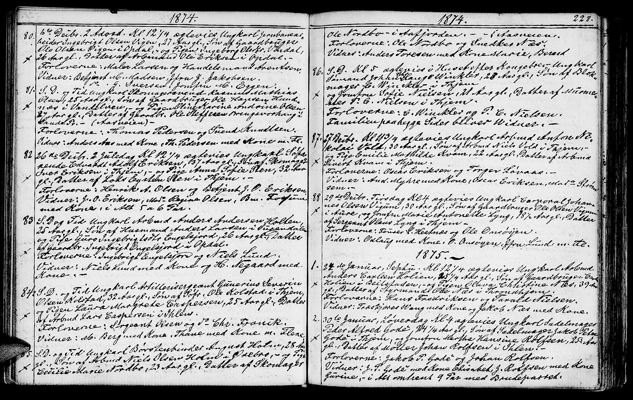 SAT, Ministerialprotokoller, klokkerbøker og fødselsregistre - Sør-Trøndelag, 602/L0142: Klokkerbok nr. 602C10, 1872-1894, s. 228