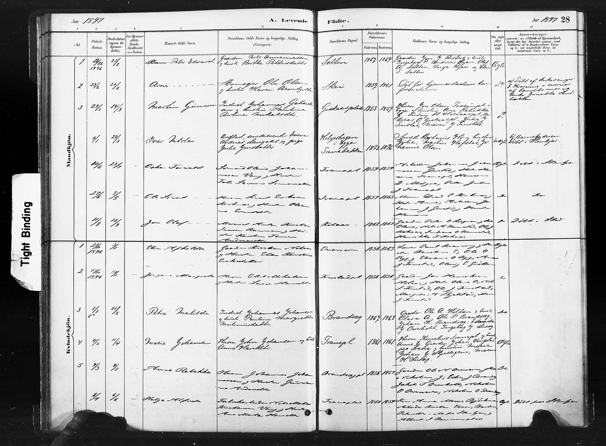 SAT, Ministerialprotokoller, klokkerbøker og fødselsregistre - Nord-Trøndelag, 736/L0361: Ministerialbok nr. 736A01, 1884-1906, s. 28