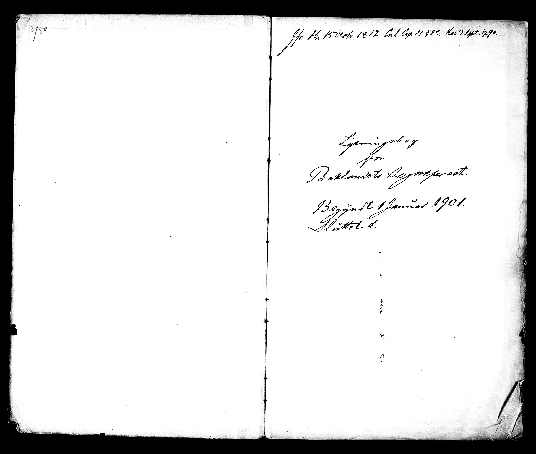 SAT, Ministerialprotokoller, klokkerbøker og fødselsregistre - Sør-Trøndelag, 604/L0192: Ministerialbok nr. 604A13, 1901-1906