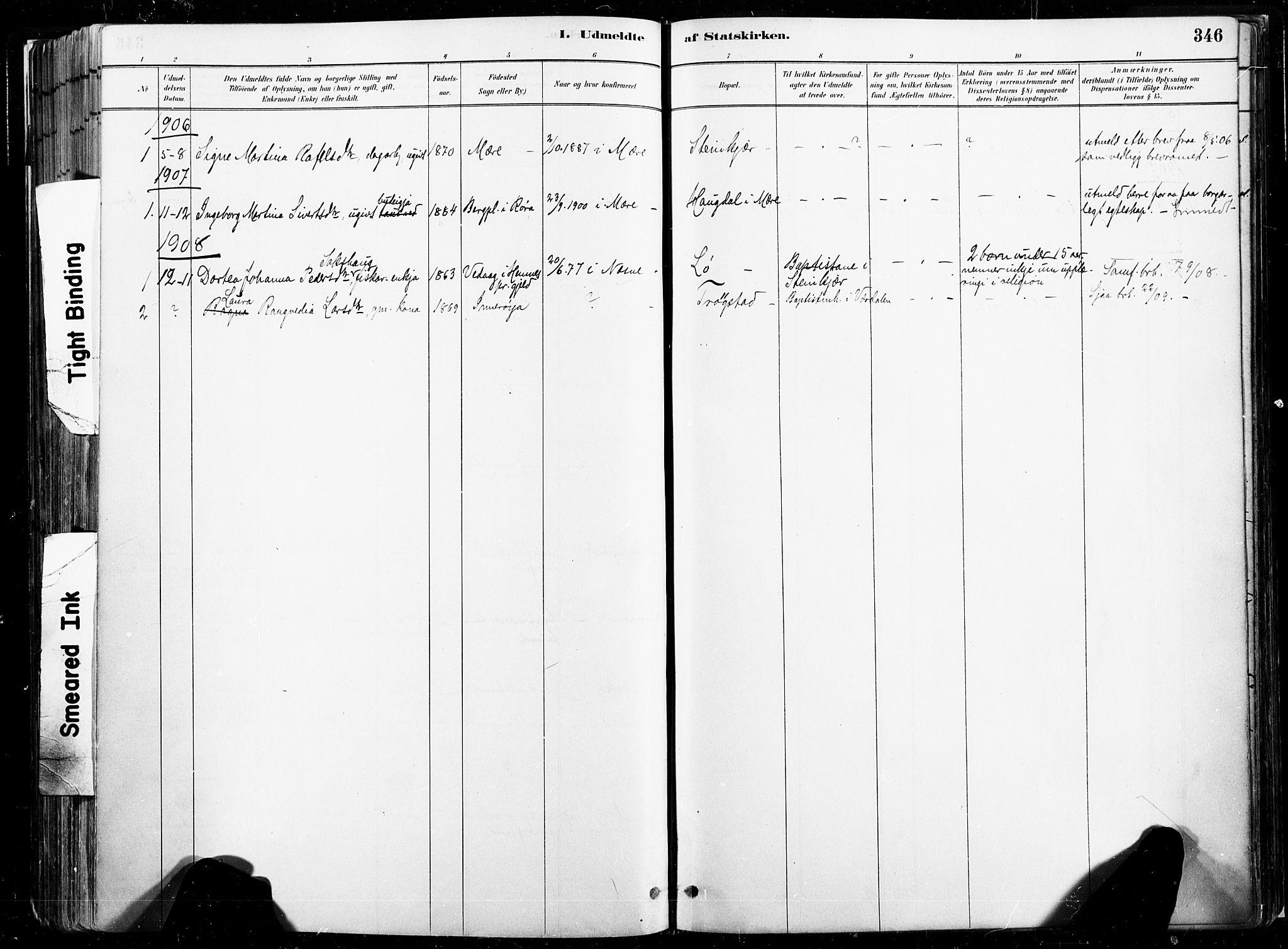 SAT, Ministerialprotokoller, klokkerbøker og fødselsregistre - Nord-Trøndelag, 735/L0351: Ministerialbok nr. 735A10, 1884-1908, s. 346