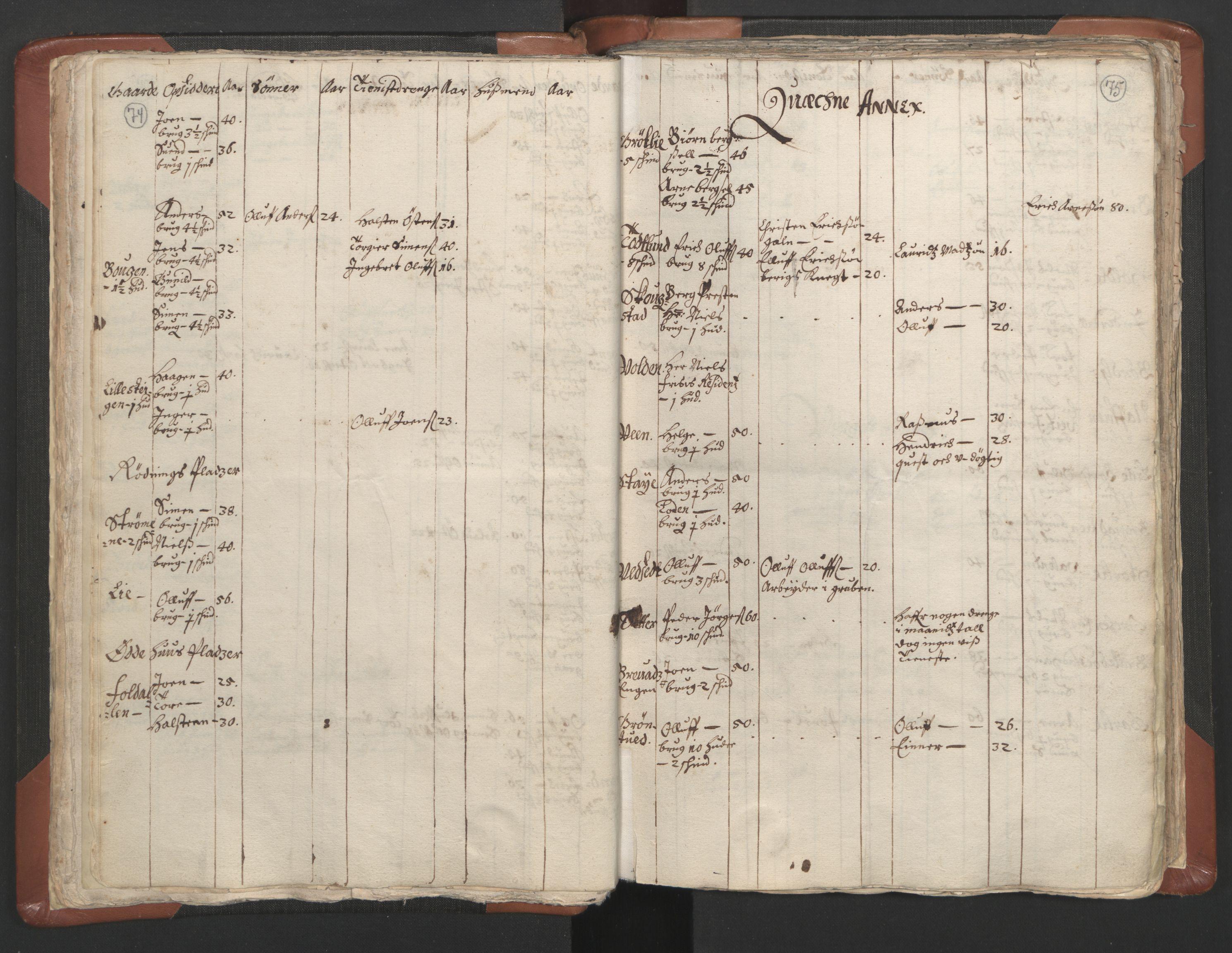 RA, Sogneprestenes manntall 1664-1666, nr. 5: Hedmark prosti, 1664-1666, s. 74-75