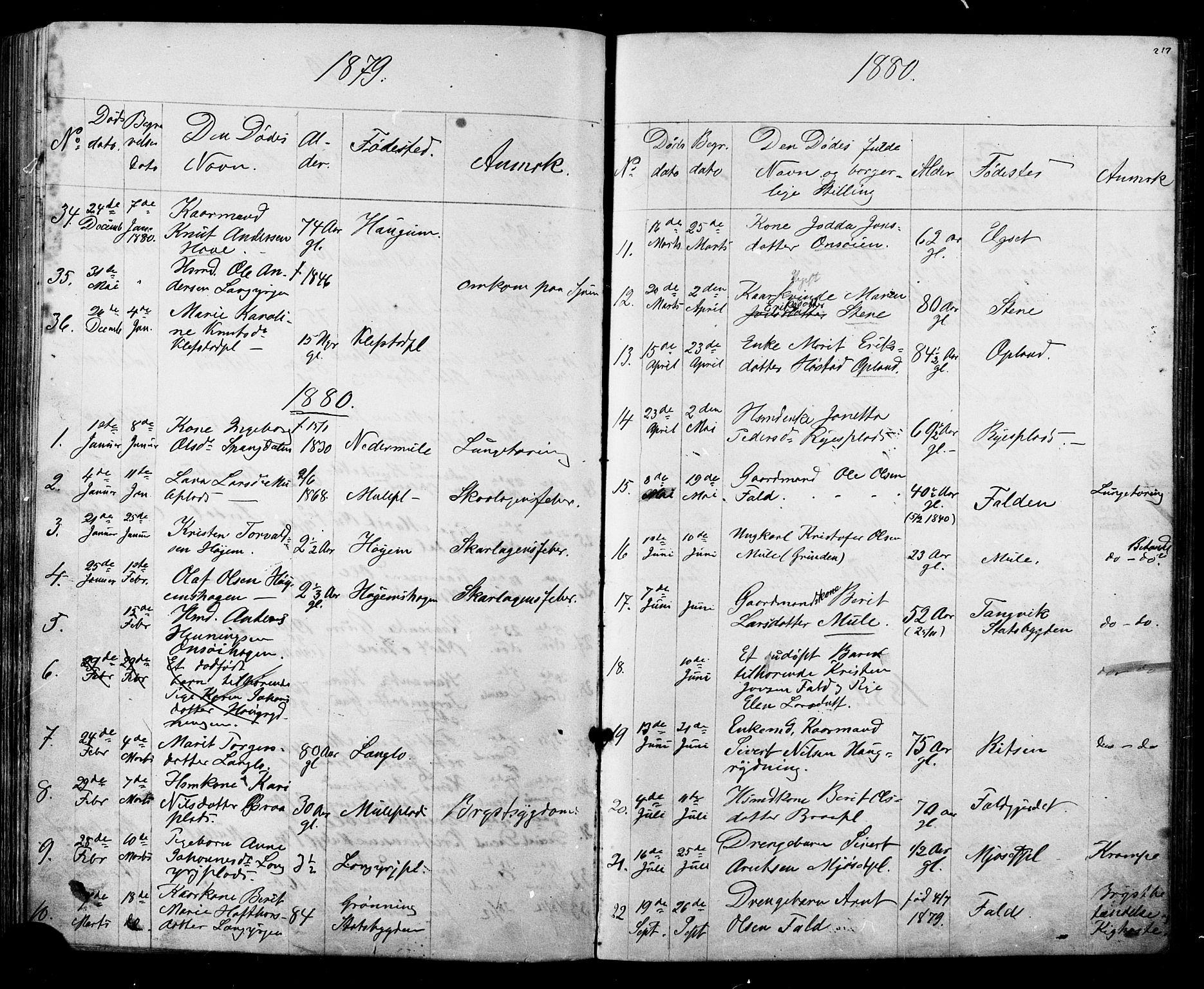 SAT, Ministerialprotokoller, klokkerbøker og fødselsregistre - Sør-Trøndelag, 612/L0387: Klokkerbok nr. 612C03, 1874-1908, s. 217