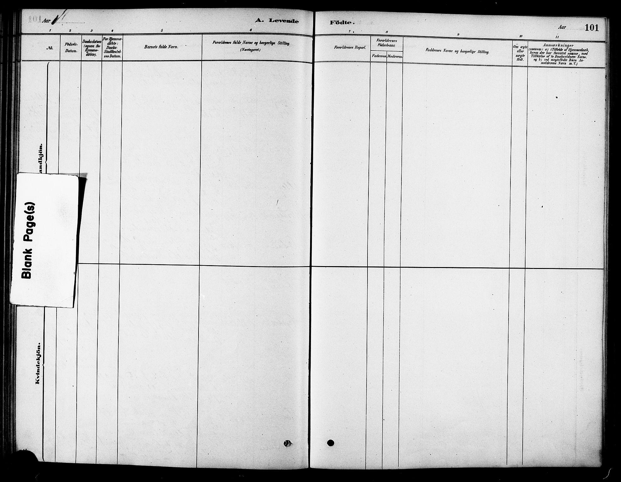 SAT, Ministerialprotokoller, klokkerbøker og fødselsregistre - Sør-Trøndelag, 658/L0722: Ministerialbok nr. 658A01, 1879-1896, s. 101