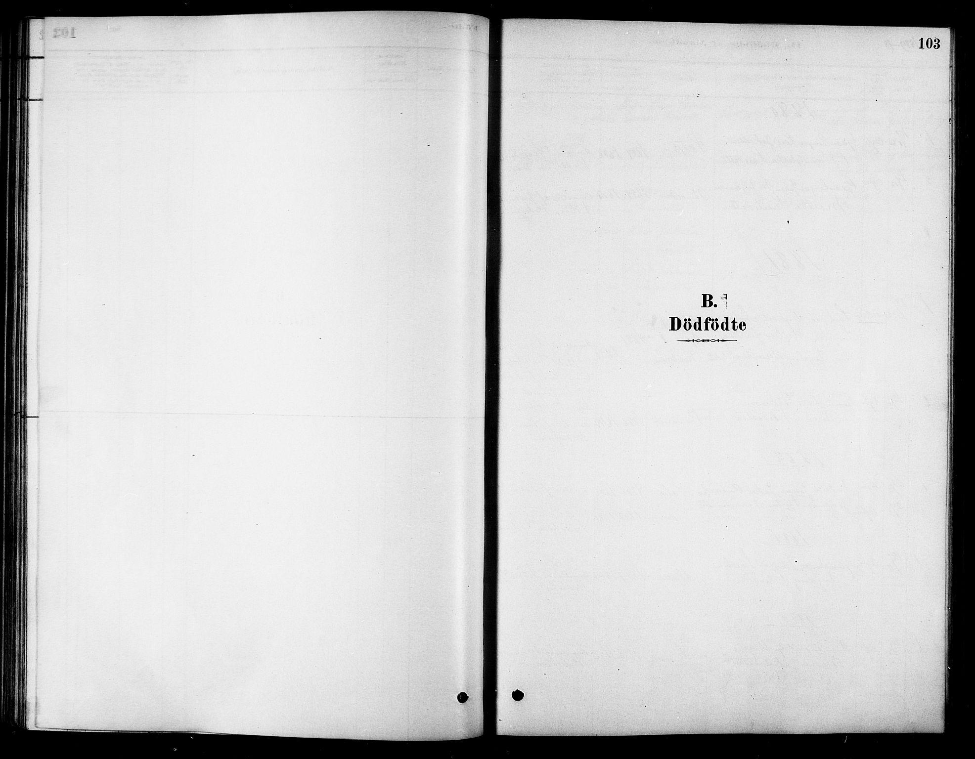 SAT, Ministerialprotokoller, klokkerbøker og fødselsregistre - Sør-Trøndelag, 658/L0722: Ministerialbok nr. 658A01, 1879-1896, s. 103