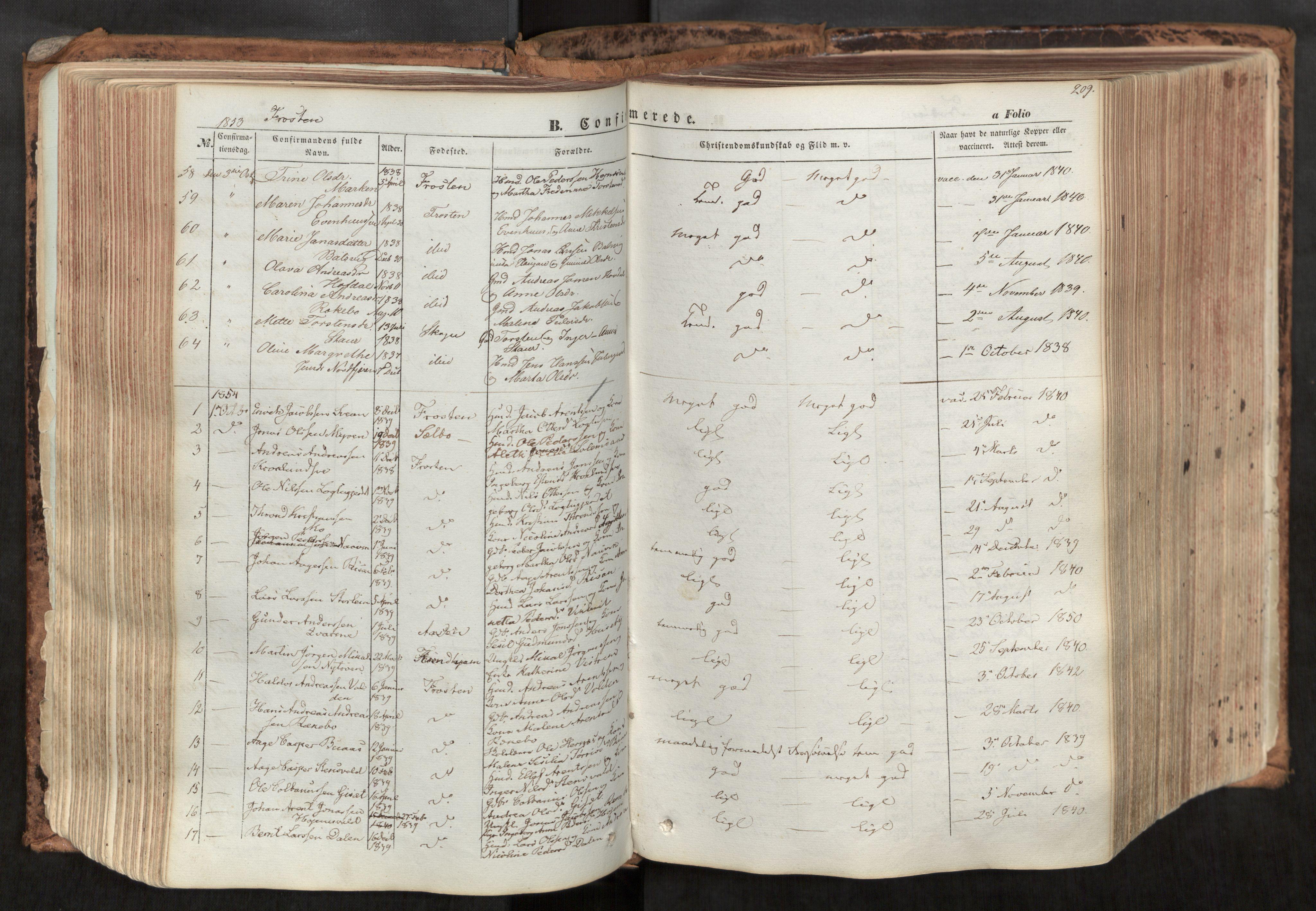 SAT, Ministerialprotokoller, klokkerbøker og fødselsregistre - Nord-Trøndelag, 713/L0116: Ministerialbok nr. 713A07, 1850-1877, s. 209