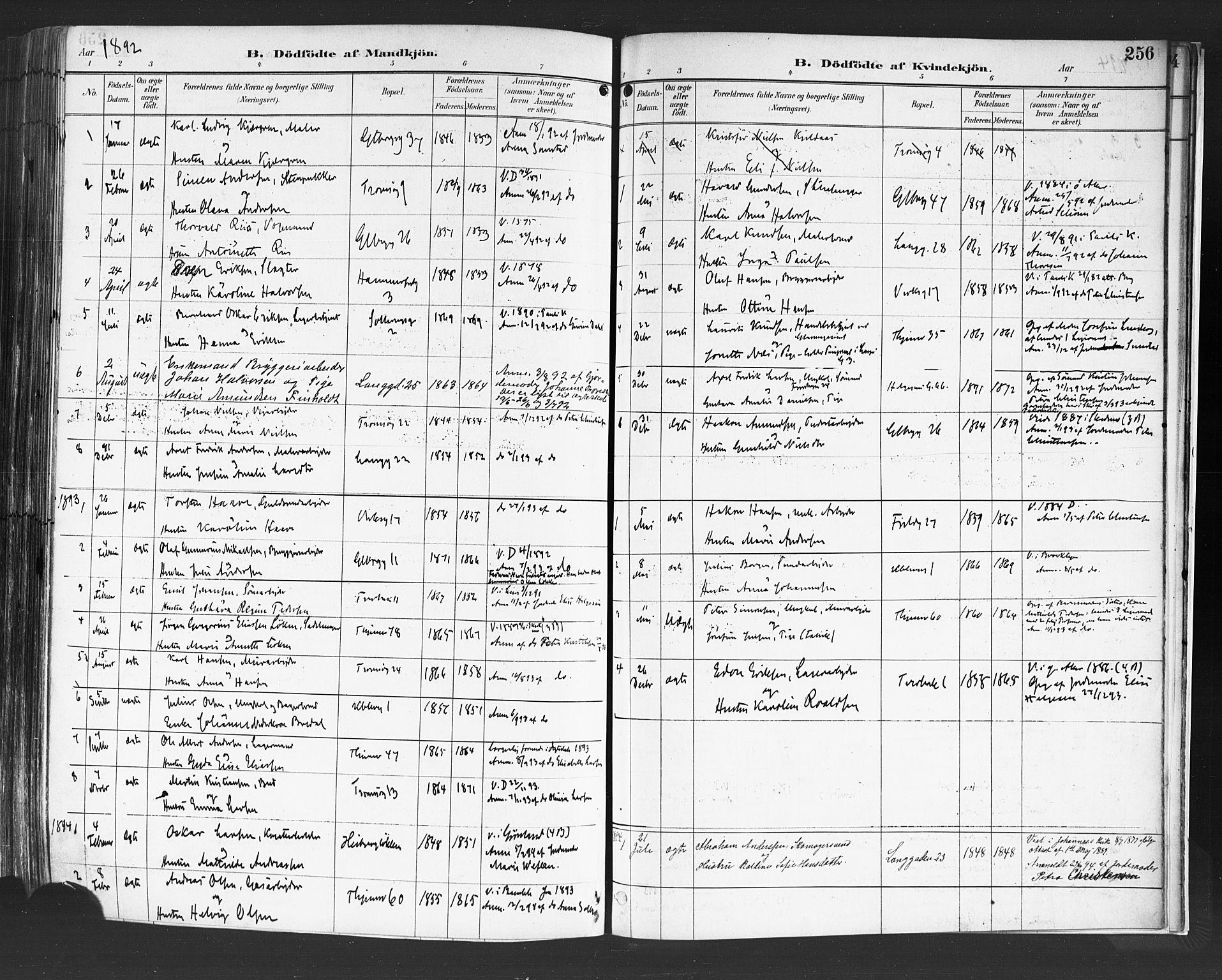 SAO, Petrus prestekontor Kirkebøker, F/Fa/L0004: Ministerialbok nr. 4, 1888-1898, s. 256