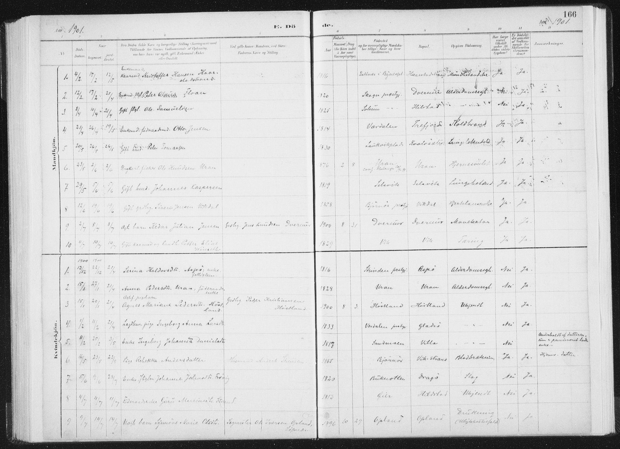 SAT, Ministerialprotokoller, klokkerbøker og fødselsregistre - Nord-Trøndelag, 771/L0597: Ministerialbok nr. 771A04, 1885-1910, s. 166