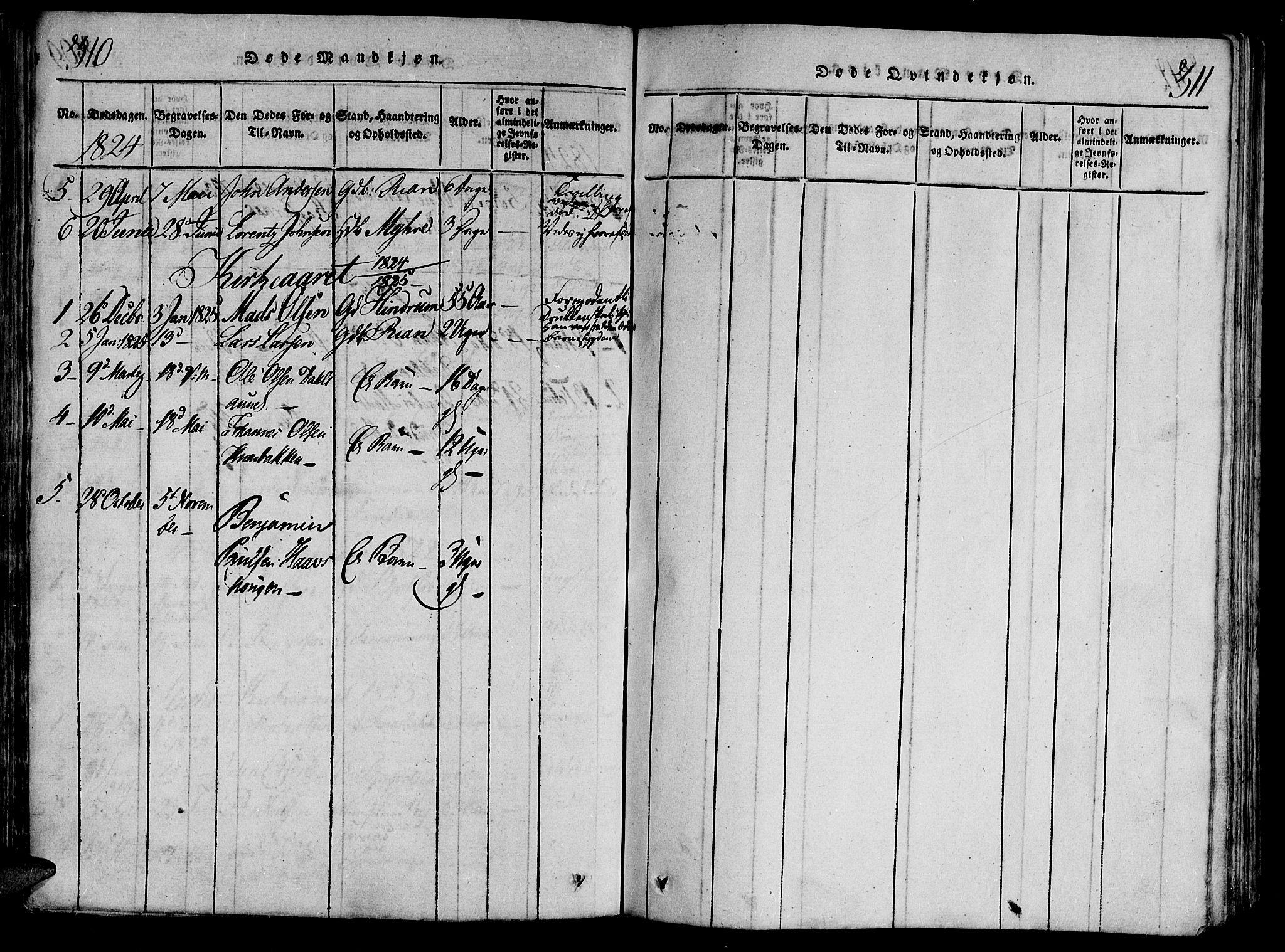 SAT, Ministerialprotokoller, klokkerbøker og fødselsregistre - Nord-Trøndelag, 701/L0005: Ministerialbok nr. 701A05 /2, 1816-1825, s. 310-311