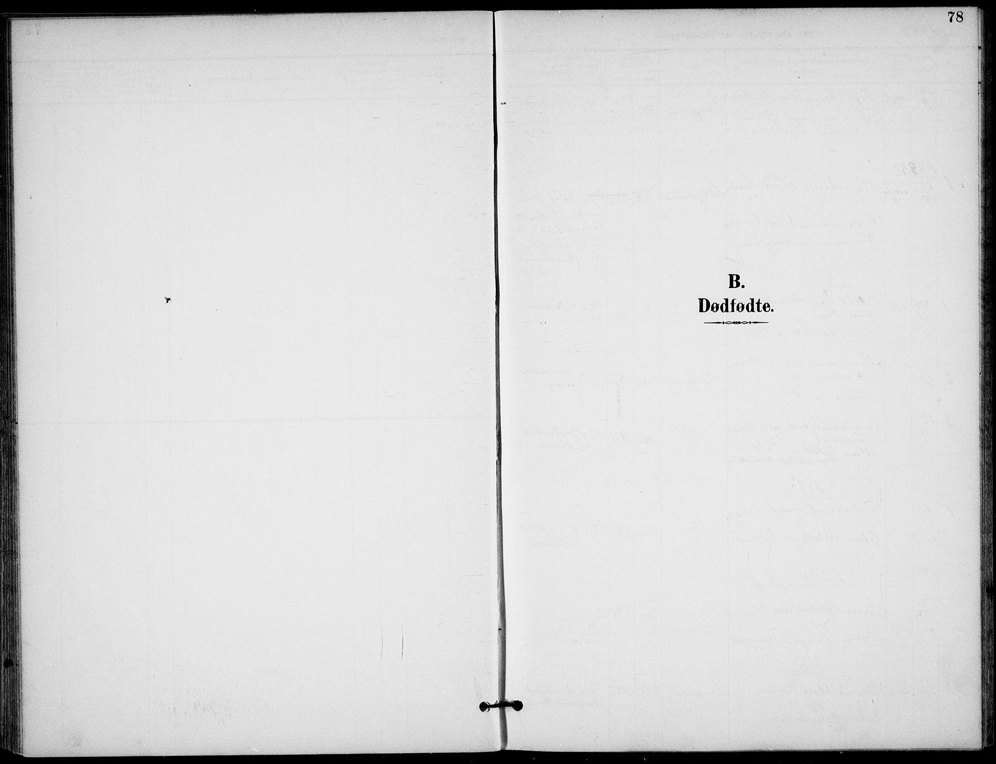 SAKO, Langesund kirkebøker, F/Fa/L0003: Ministerialbok nr. 3, 1893-1907, s. 78