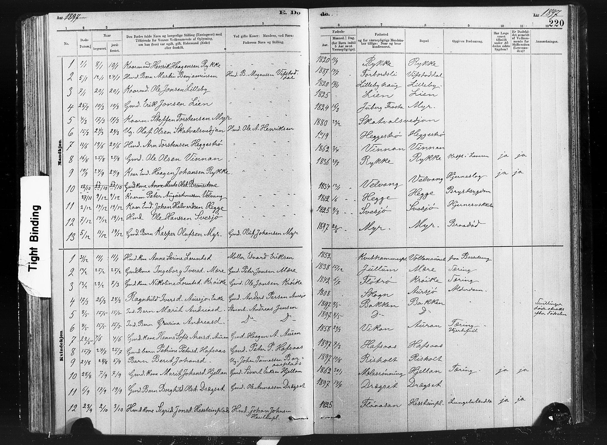 SAT, Ministerialprotokoller, klokkerbøker og fødselsregistre - Nord-Trøndelag, 712/L0103: Klokkerbok nr. 712C01, 1878-1917, s. 220