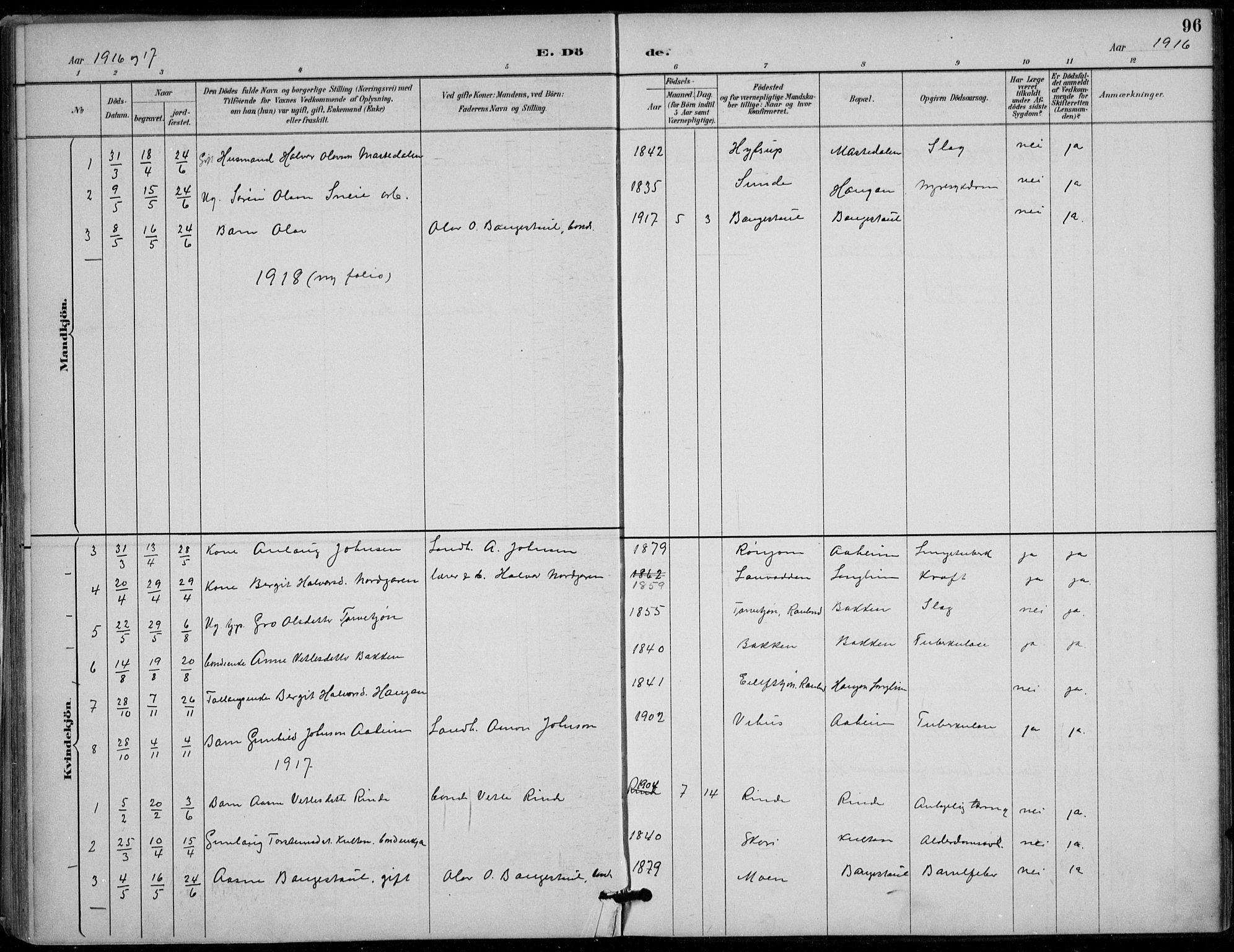 SAKO, Seljord kirkebøker, F/Fc/L0002: Ministerialbok nr. III 2, 1887-1920, s. 96