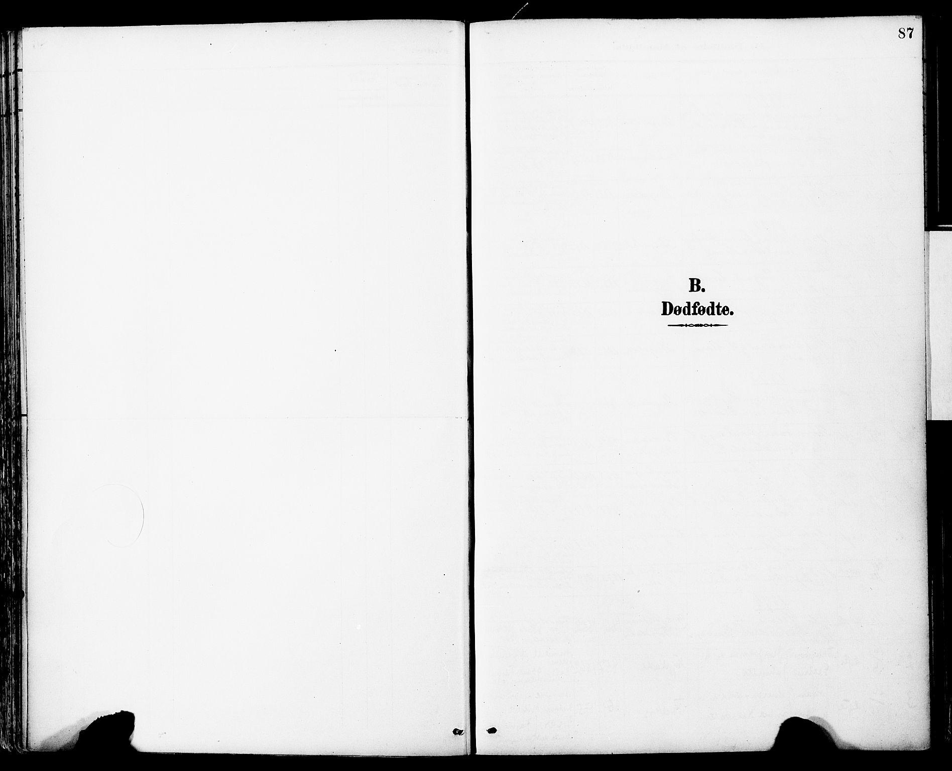 SAT, Ministerialprotokoller, klokkerbøker og fødselsregistre - Sør-Trøndelag, 681/L0935: Ministerialbok nr. 681A13, 1890-1898, s. 87