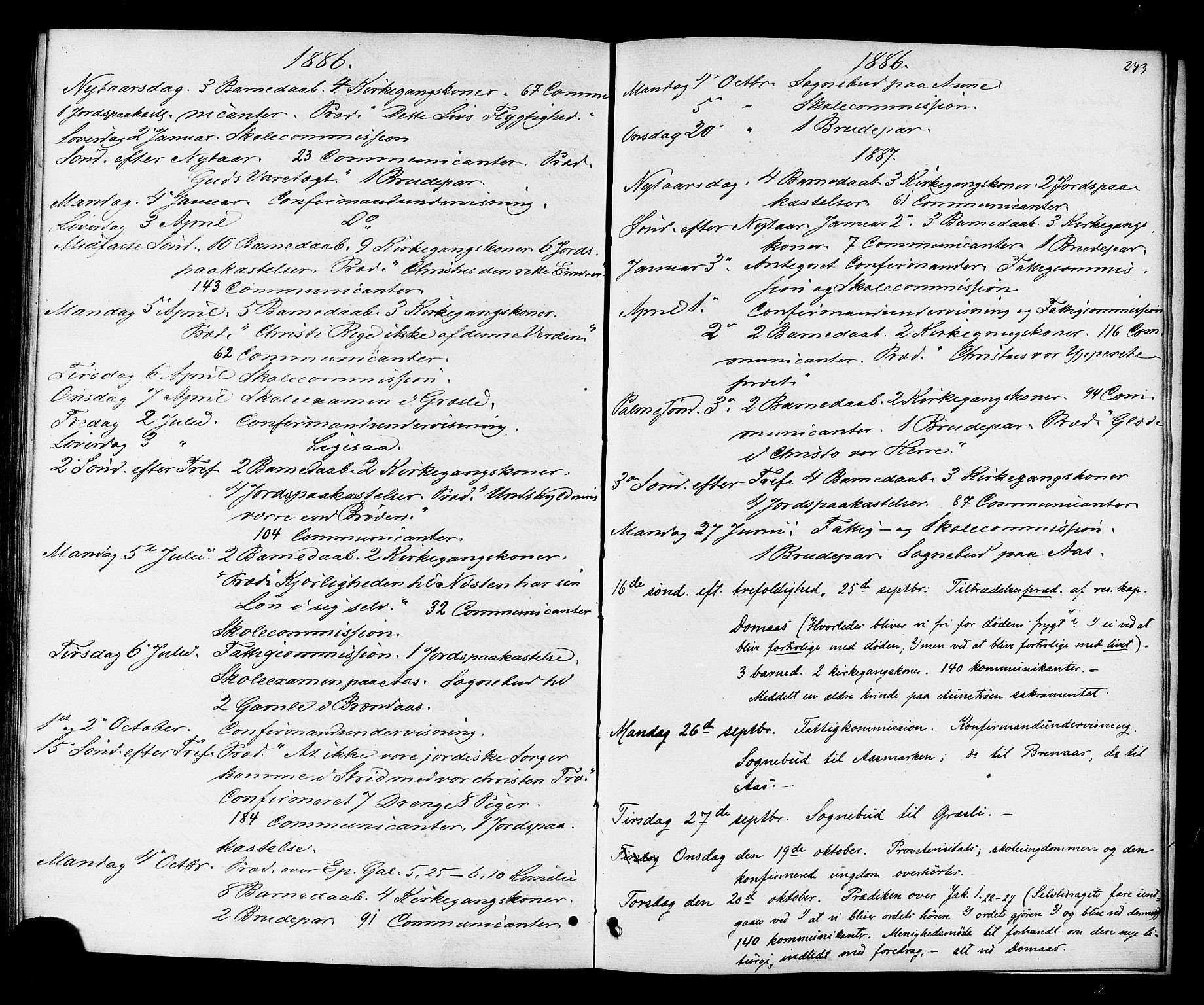 SAT, Ministerialprotokoller, klokkerbøker og fødselsregistre - Sør-Trøndelag, 698/L1163: Ministerialbok nr. 698A01, 1862-1887, s. 243